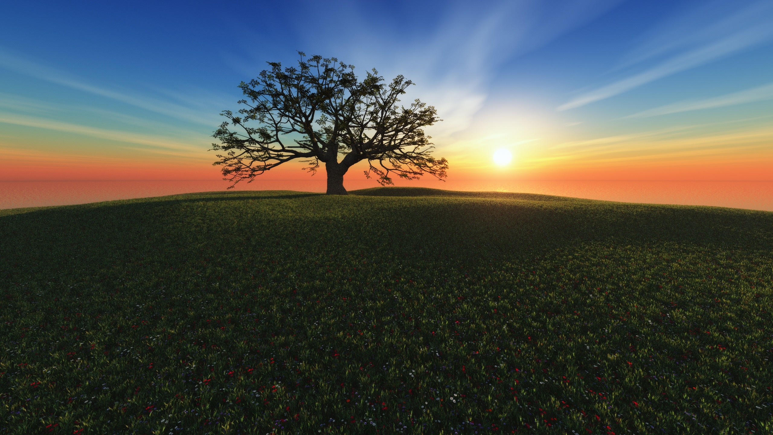 Tree of life desktop wallpaper 56 images - Family tree desktop wallpaper ...