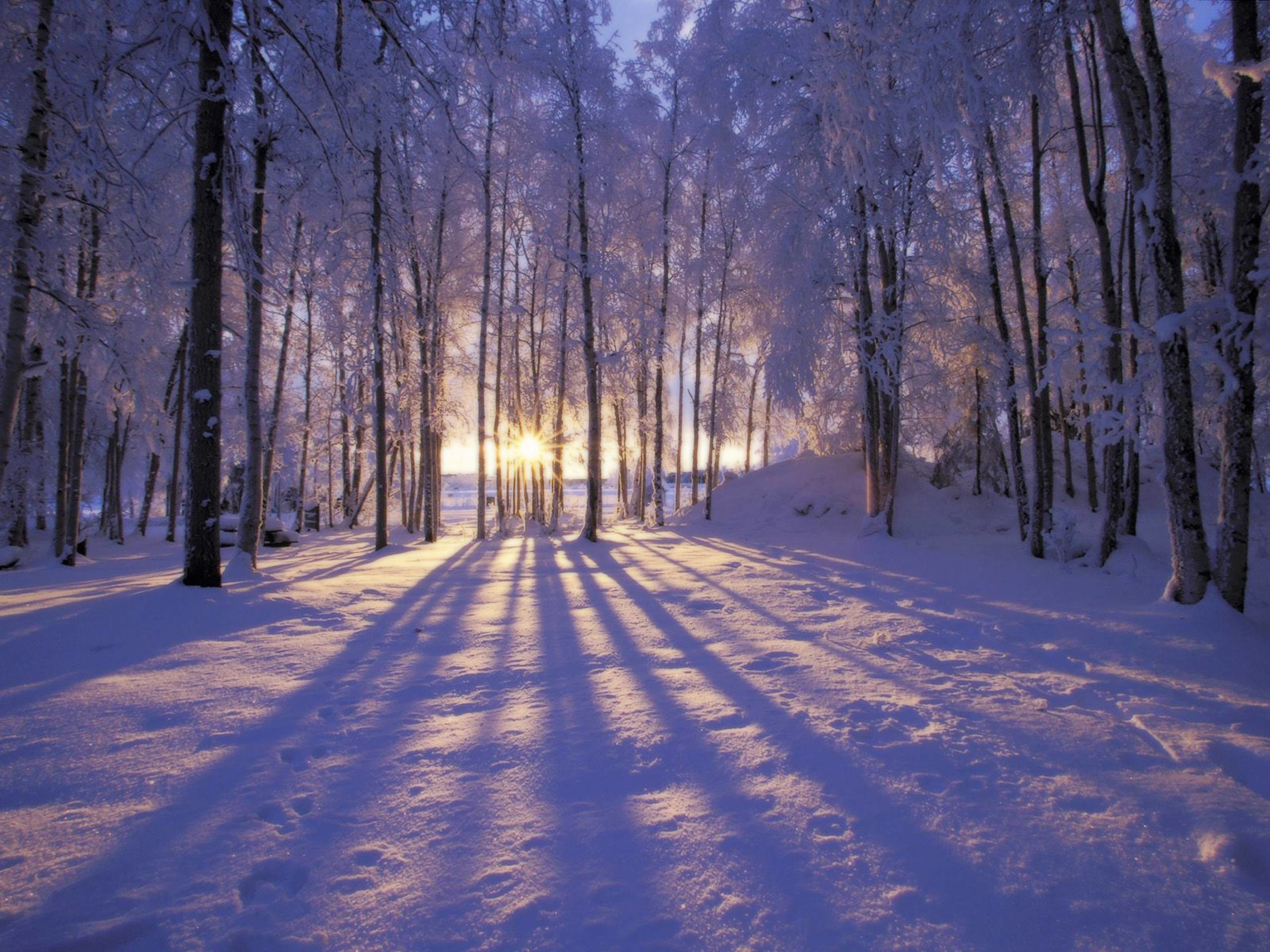 2560x1920 Winter Scenes for Desktop Wallpapers - HD Wallpapers Inn