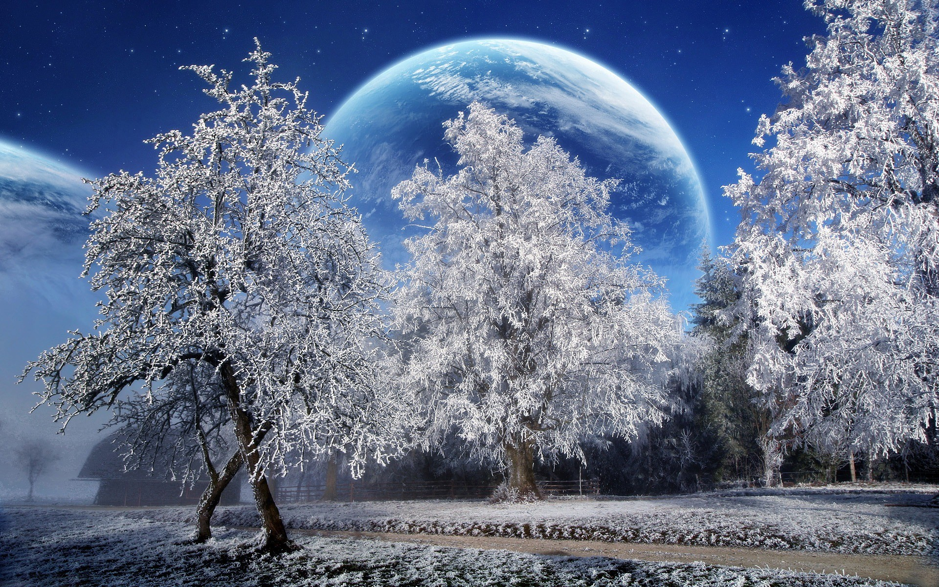 1920x1200 Magic Winter Wallpaper Photo Manipulated Nature Wallpapers