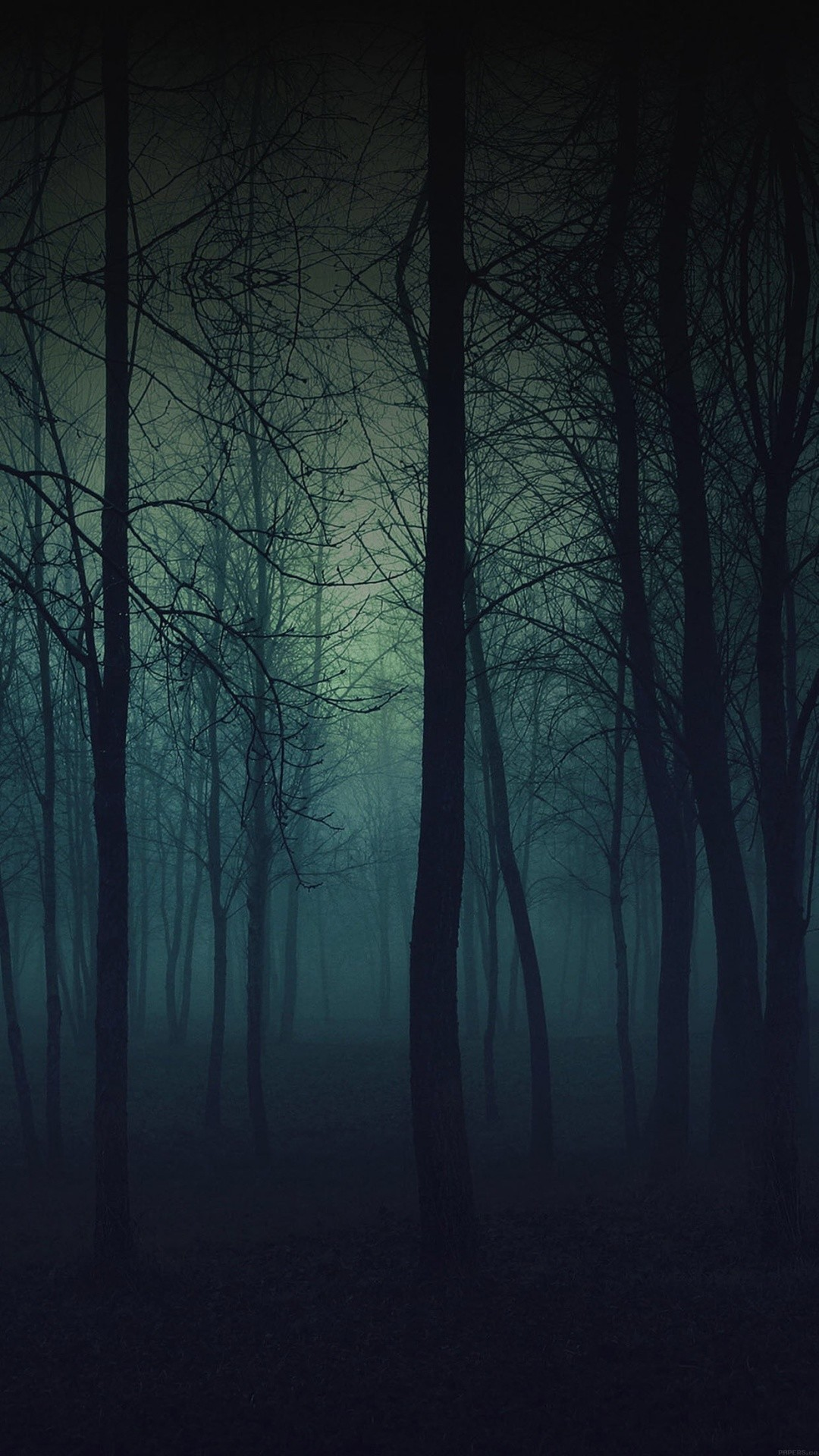 1080x1920 Eerie Forest Night iPhone 6 Plus HD Wallpaper ...