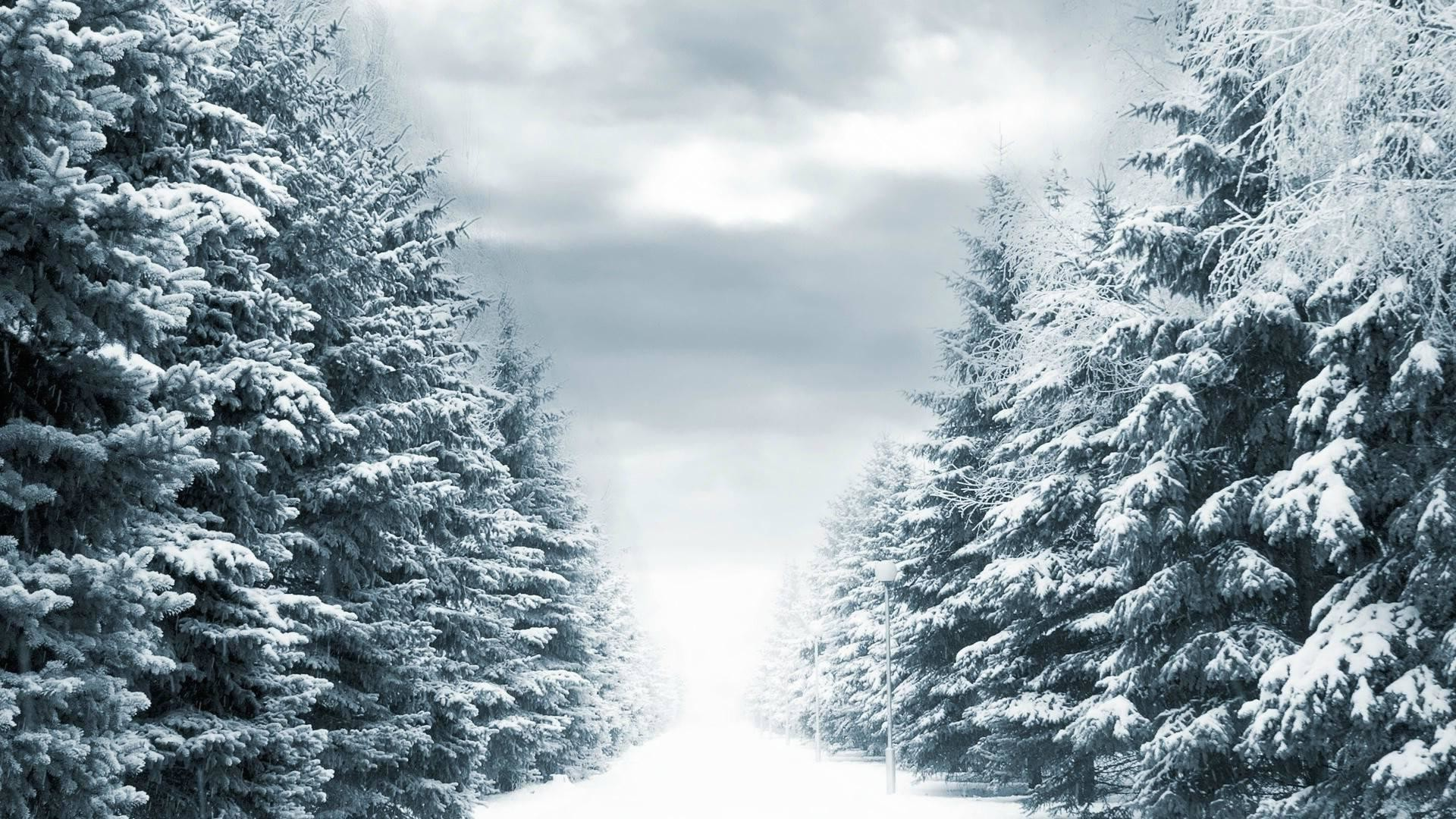 Snowy backgrounds 54 images - Snowy wallpaper ...