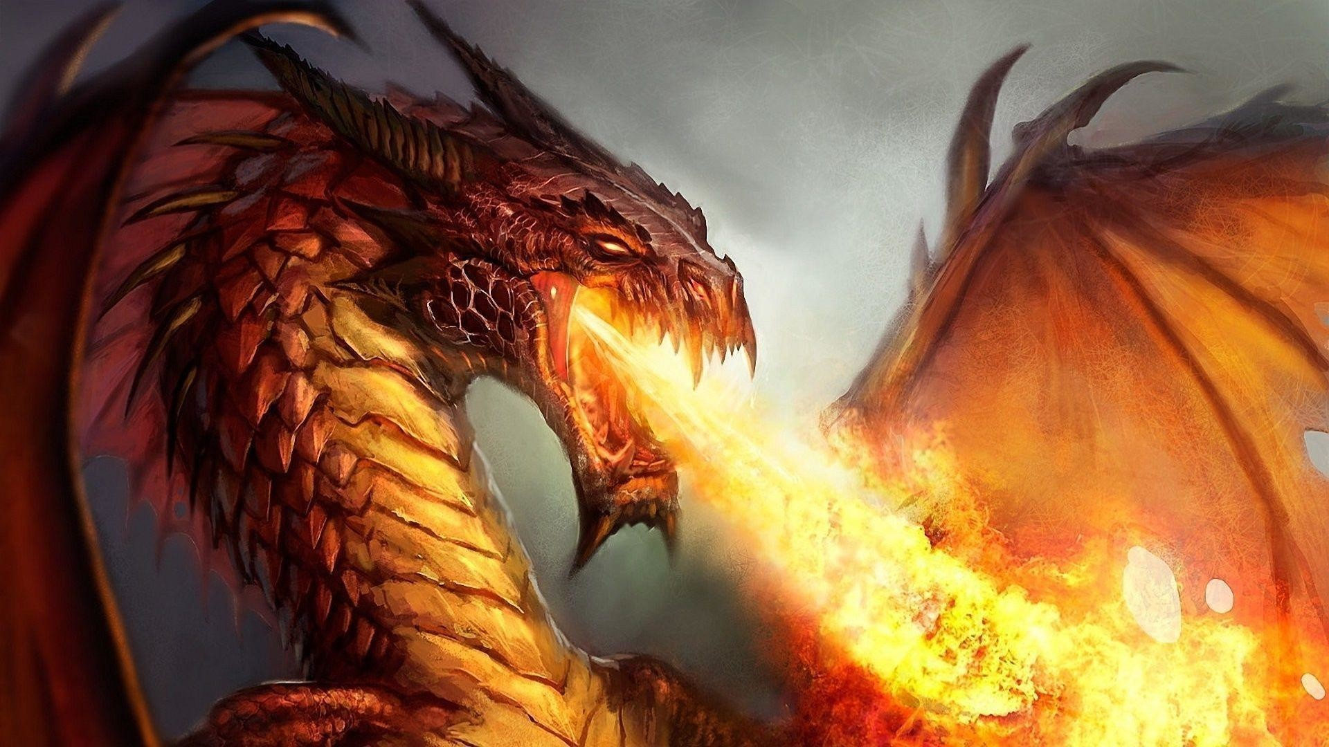 1920x1080  Wallpapers For > Fire Dragon Wallpapers 3d