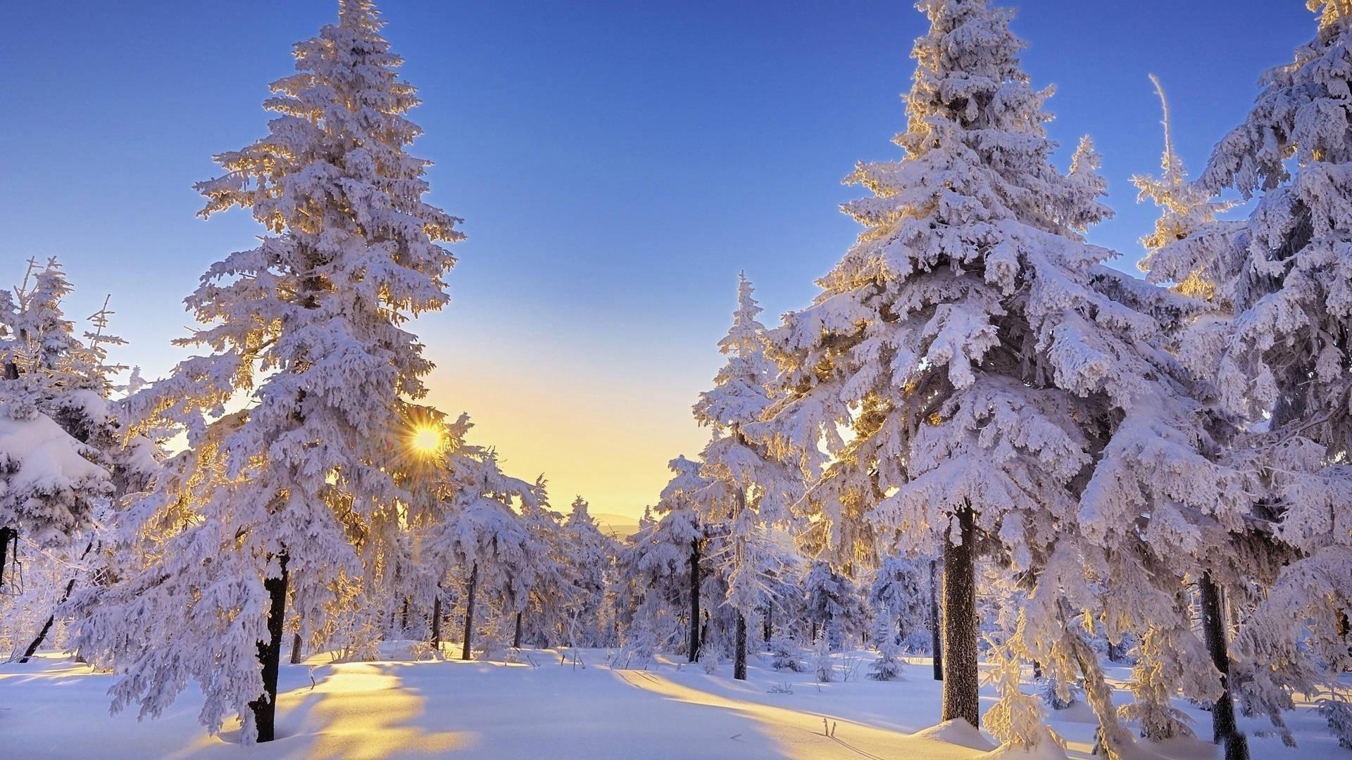 Beautiful winter wonderland wallpaper 43 images - Winter desktop ...