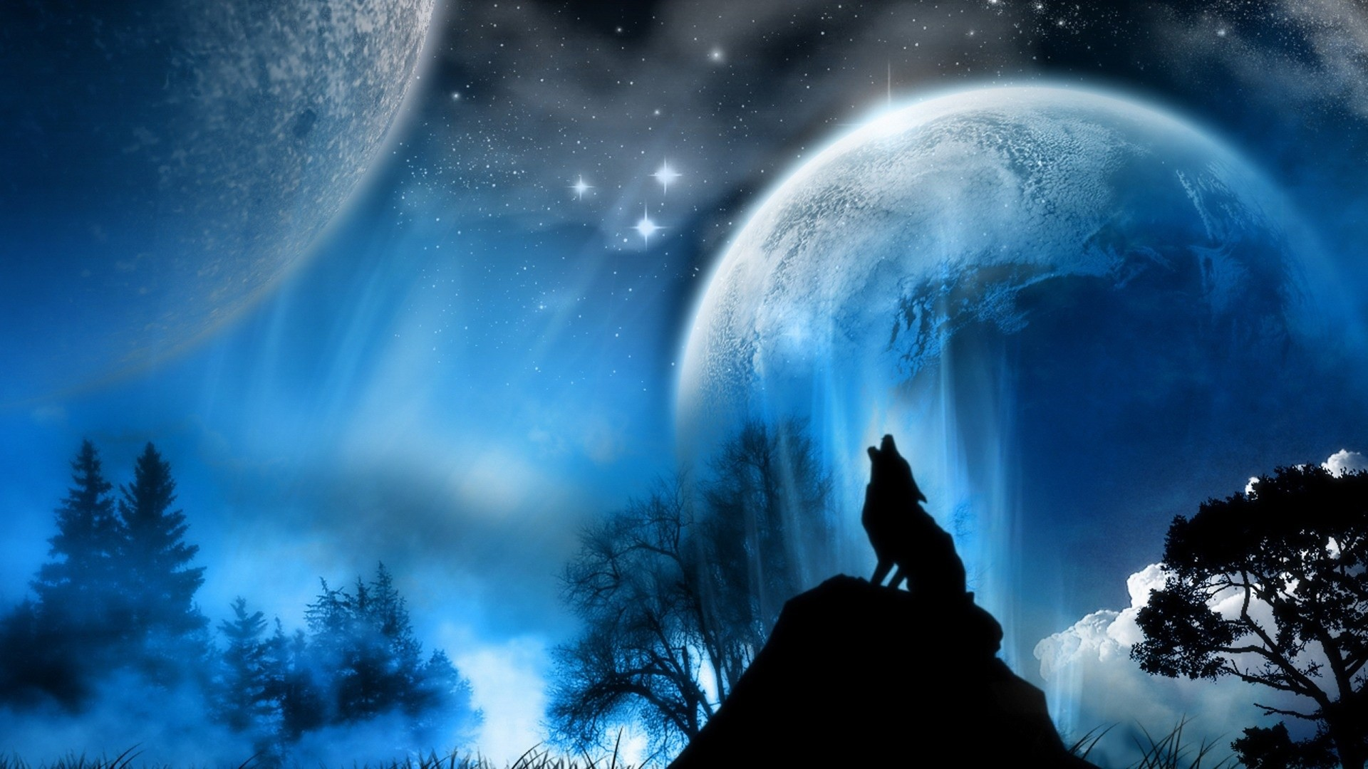 1920x1080 Wallpaper's Collection: «Wolf Wallpapers» ...