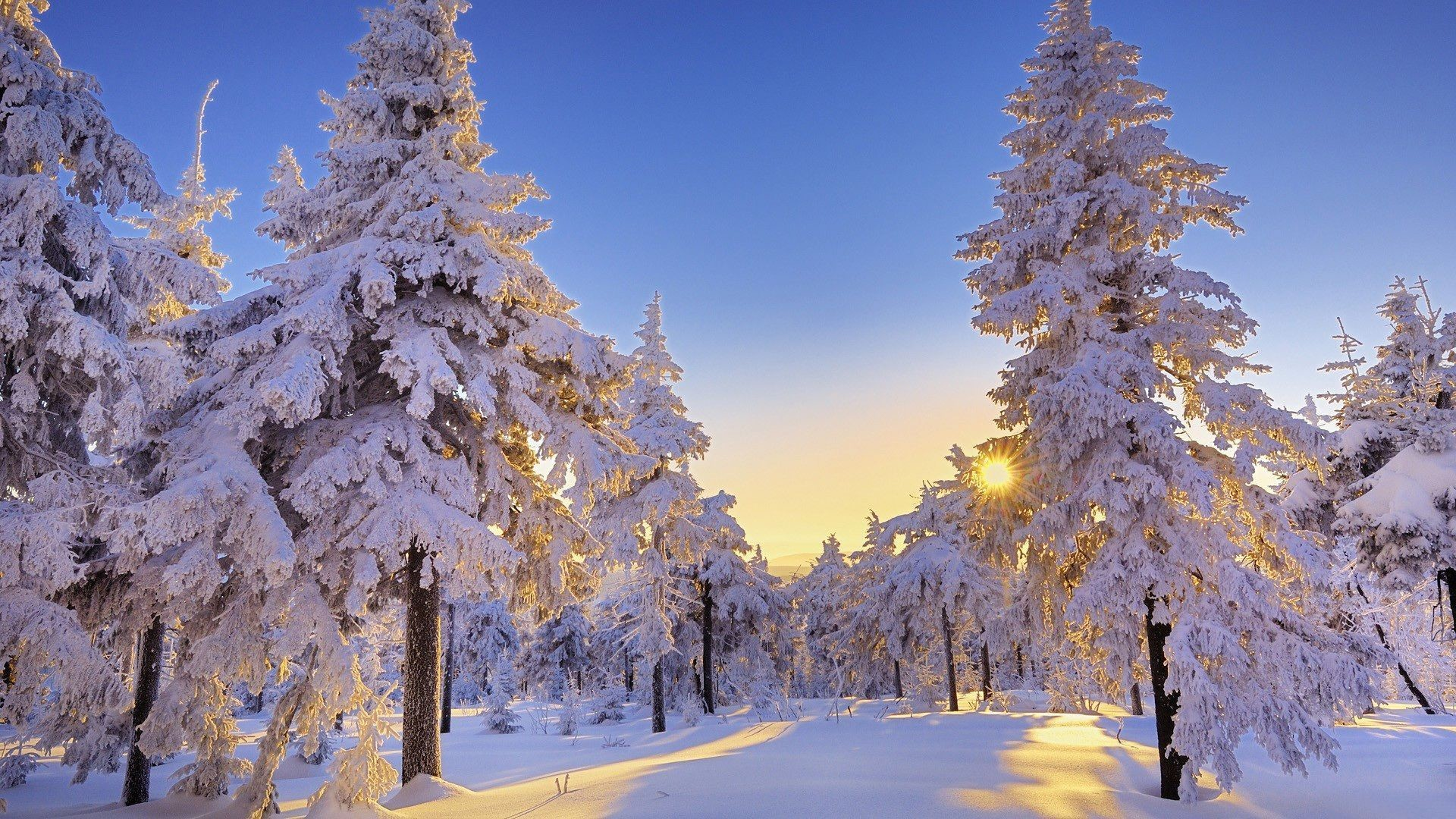 1920x1080 Full HD p Best HD Winter Wallpapers Wallpapers