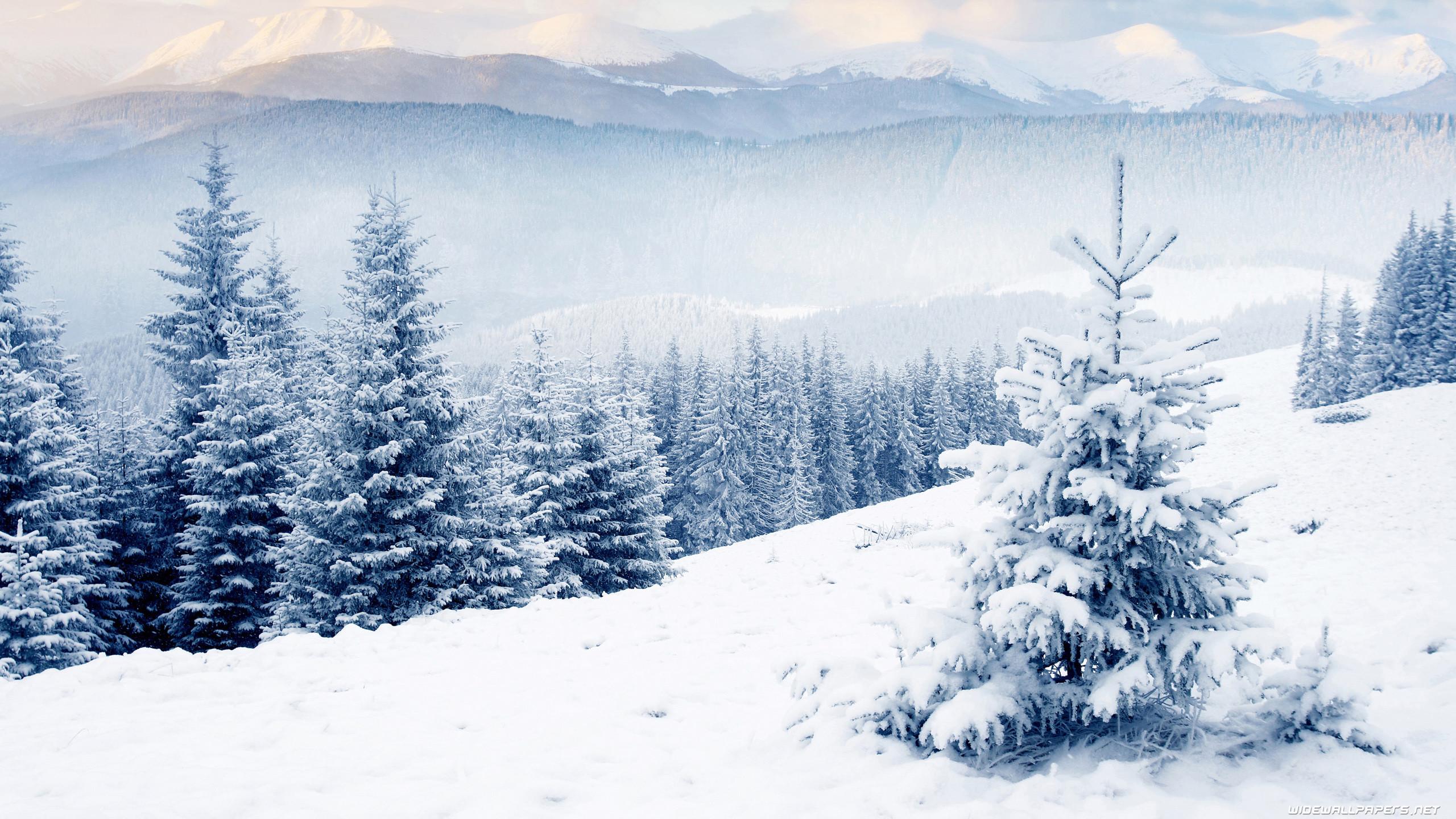 Desktop Wallpaper Winter (62+ images)