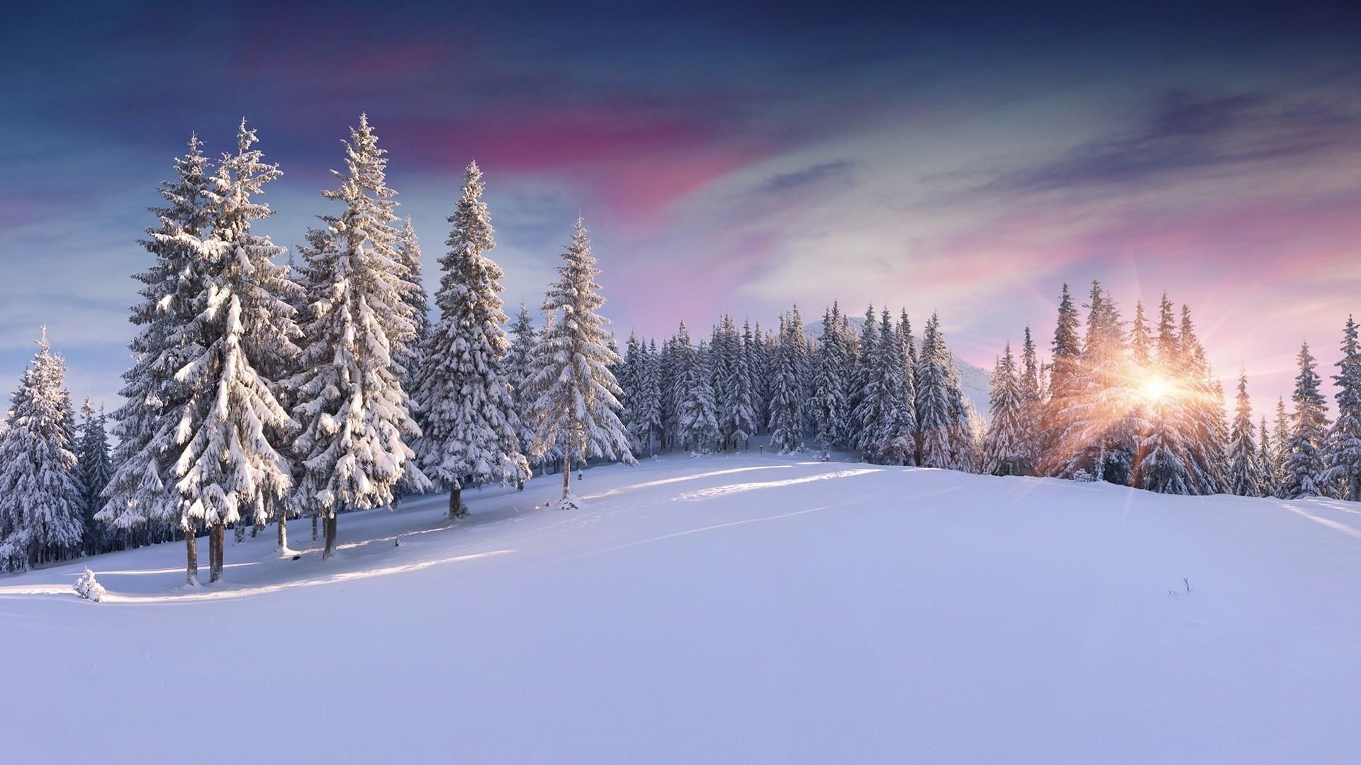 Windows spotlight wallpapers 99 images for Sfondi invernali desktop