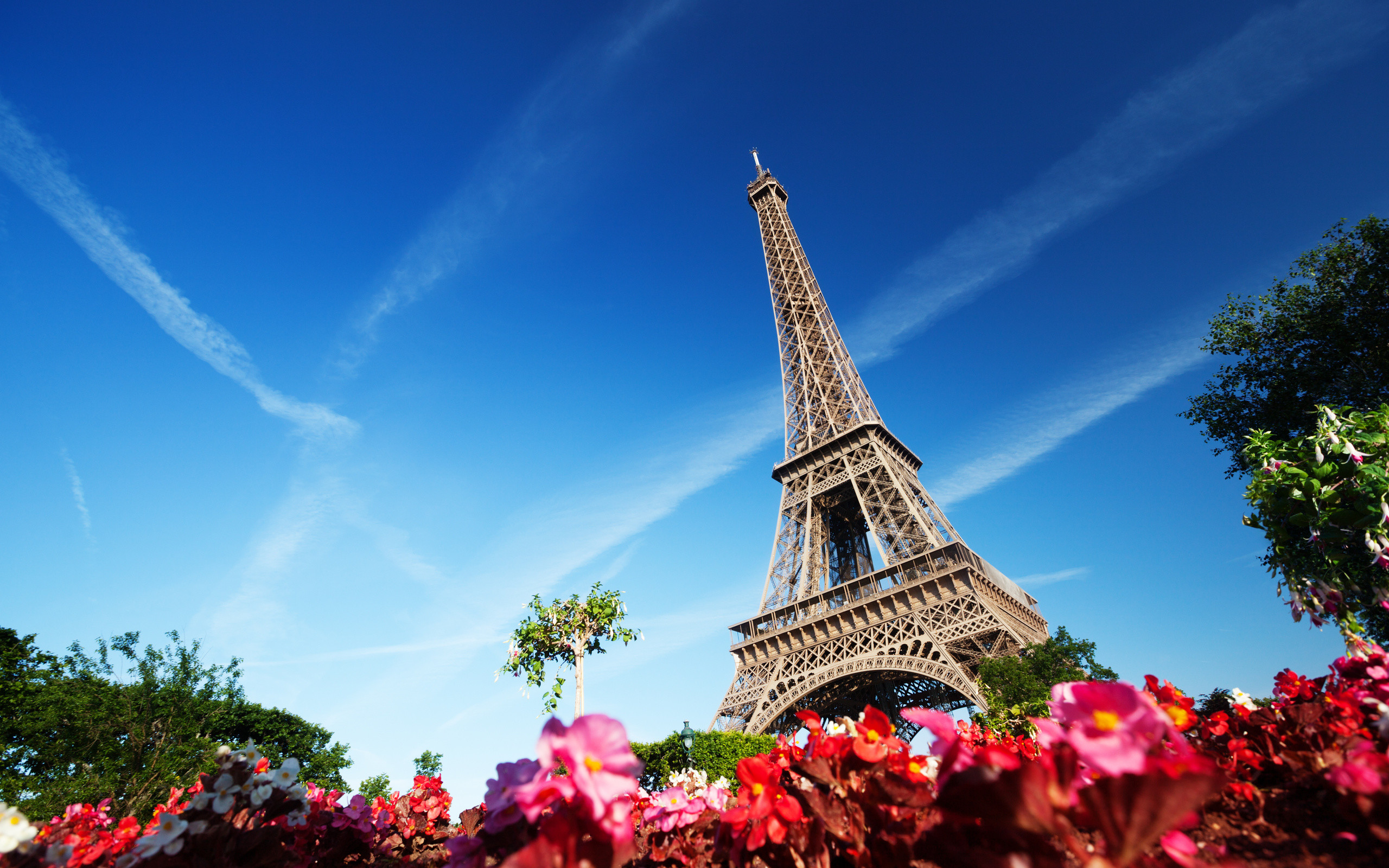 2560x1600 Eiffel Tower and Flowers Wallpaper