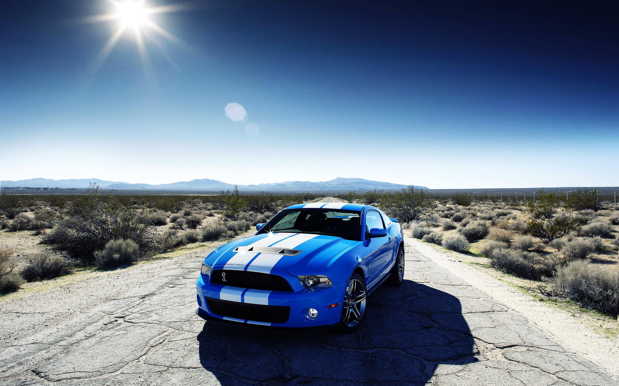 2560x1600 Ford Shelby GT500 Car