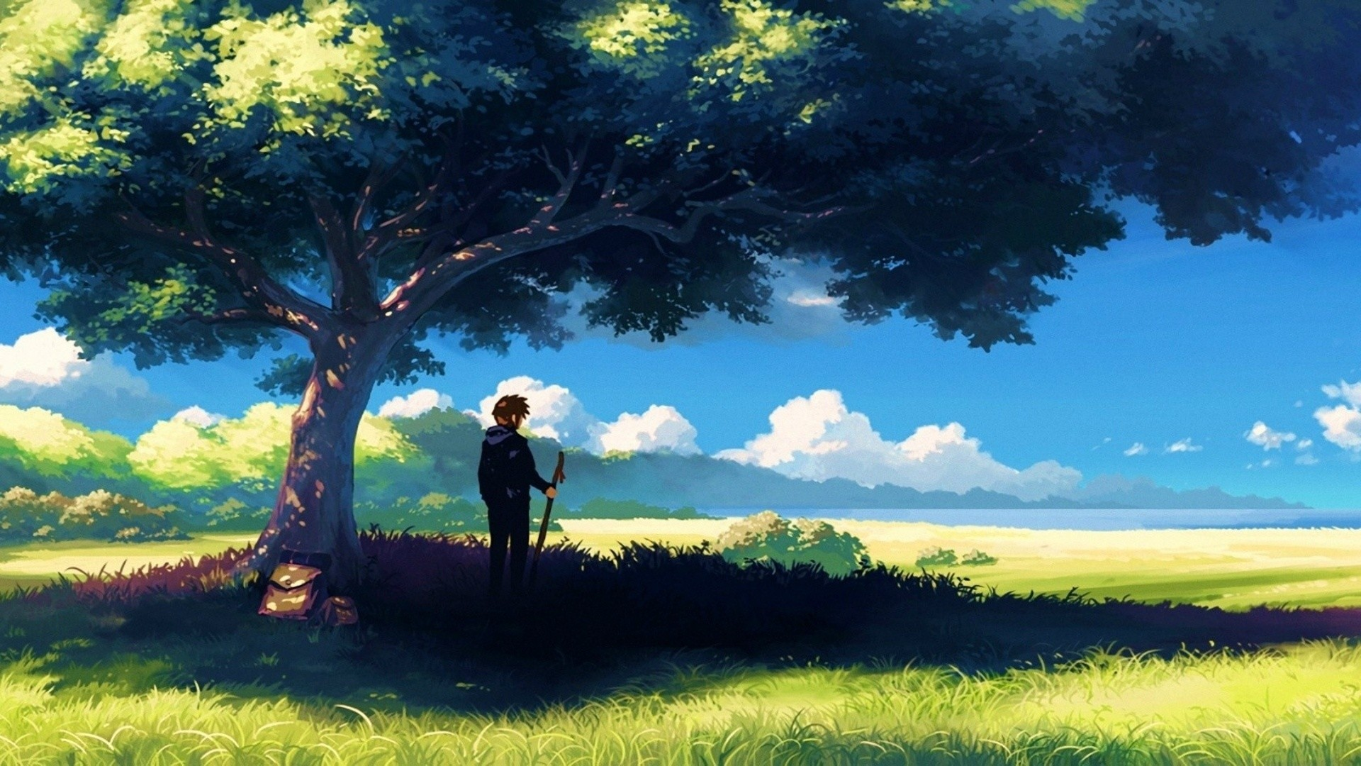 1920x1080  Anime, Scenery, Boy Under Tree, Anime Scenery Wallpapers .