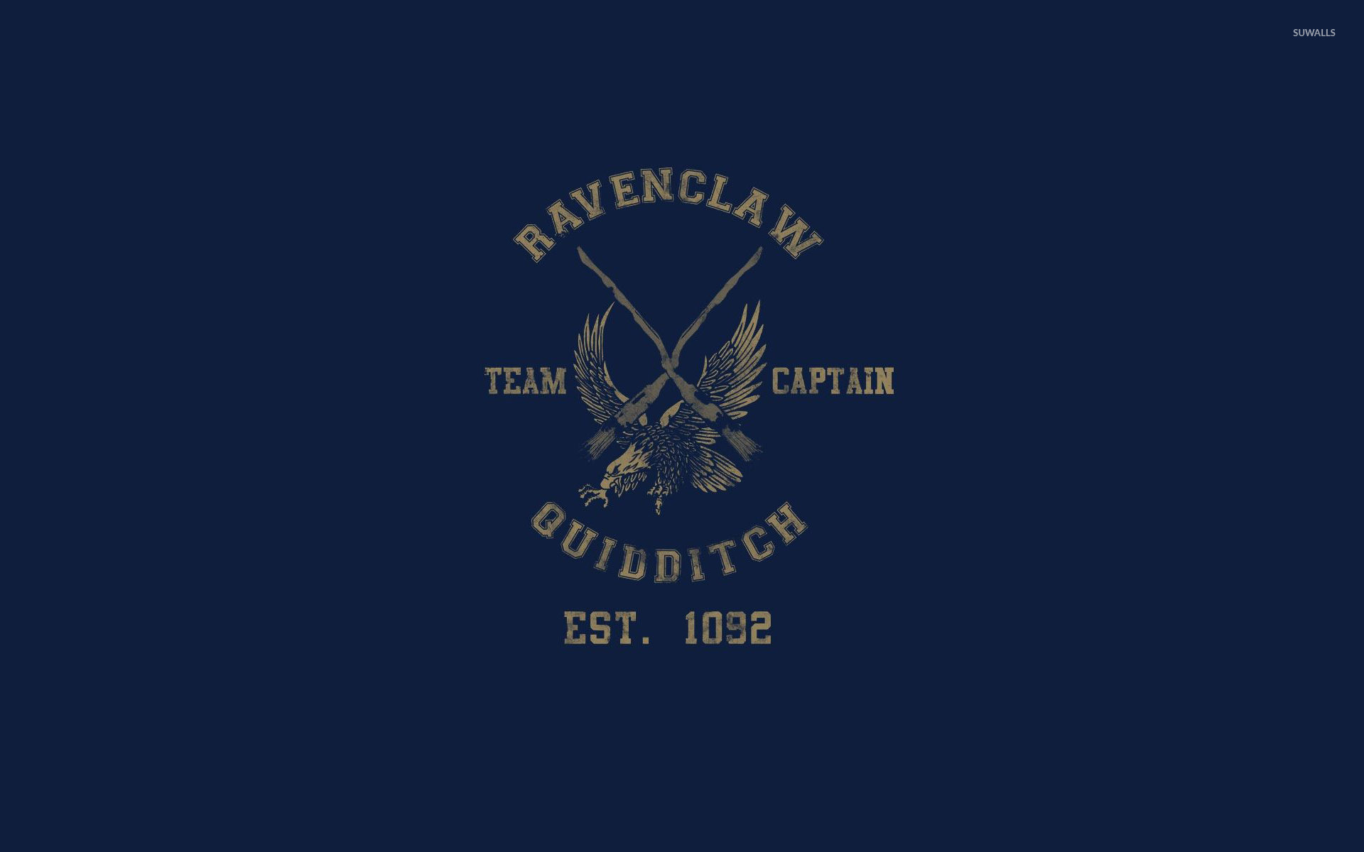 1920x1200 Ravenclaw Quidditch team - Harry Potter wallpaper  jpg