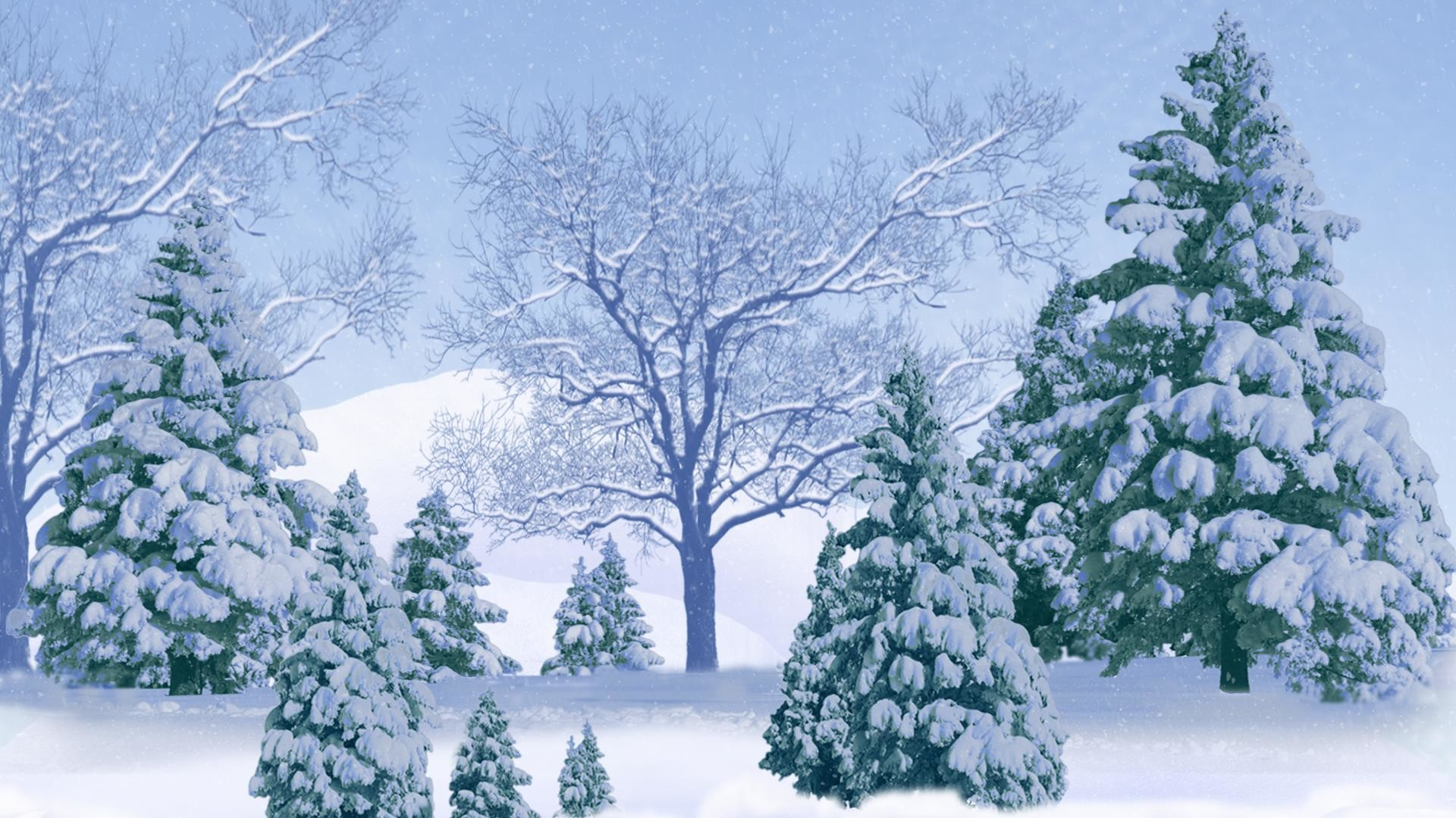 1920x1080  Winter and snow trees white backgrounds wide wallpapers:1280x800,1440x900,1680x1050  -
