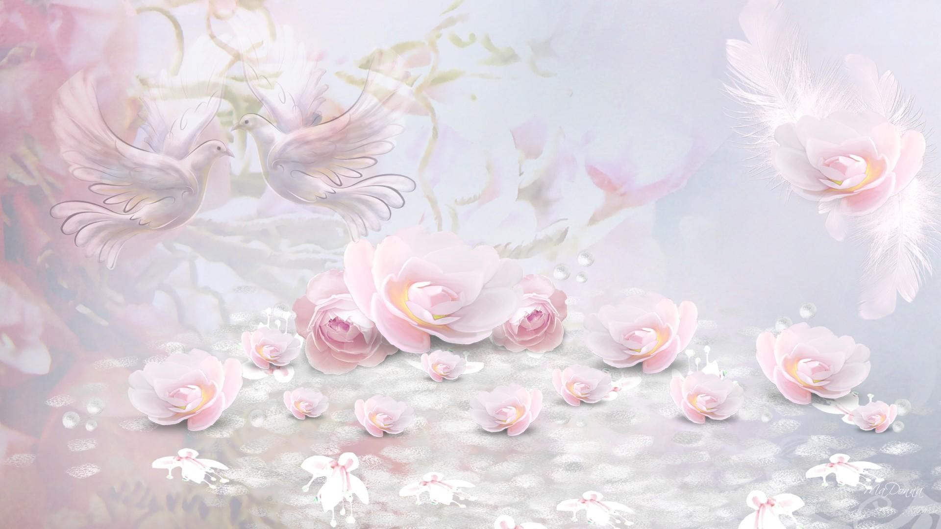 Wall Paper Wide Pink Rose Colours Soft Nature Flower: Soft Pink Wallpaper (39+ Images