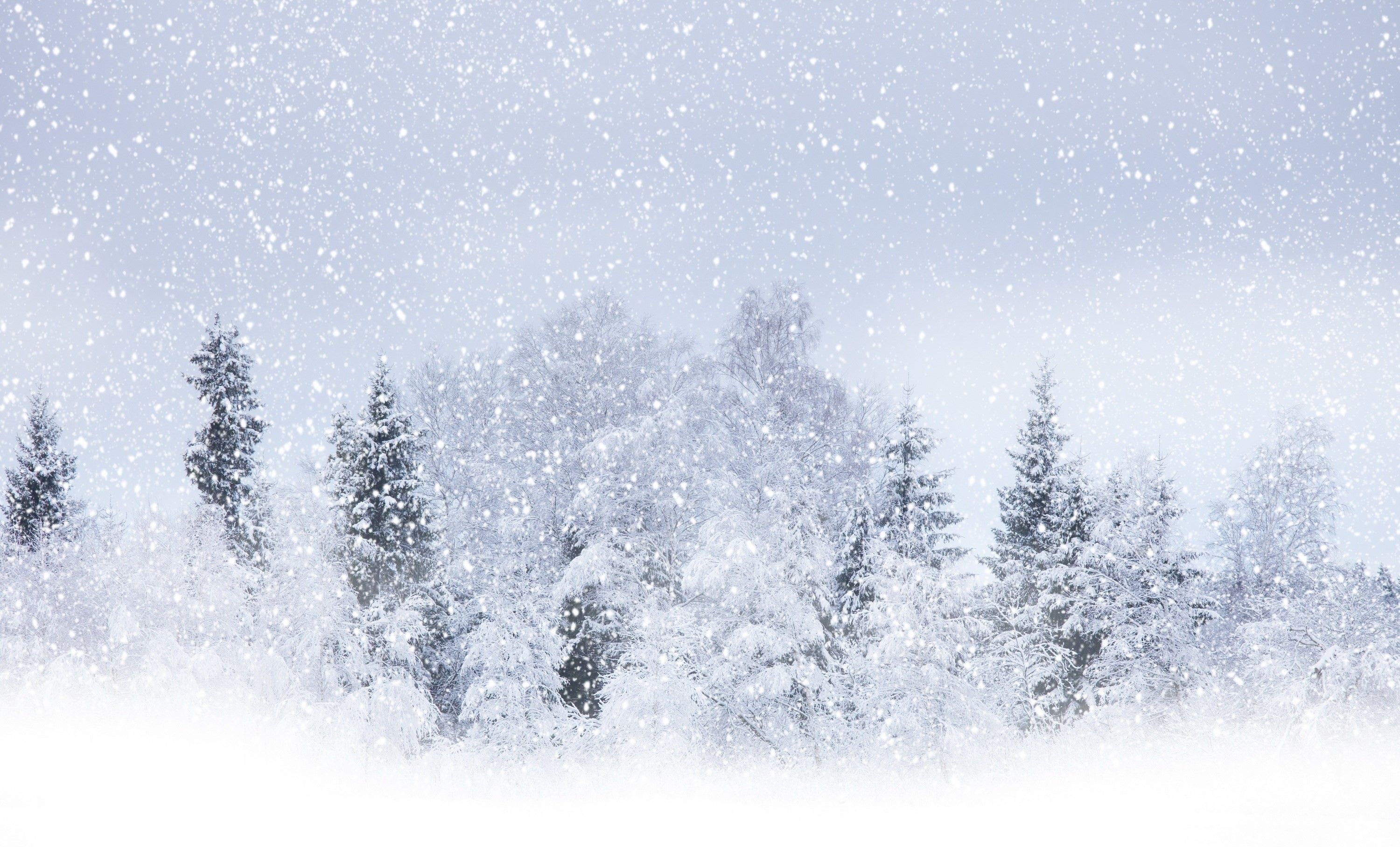 3000x1816 The article explains how to prepare yourself from winter storms and  excessive cold weather.