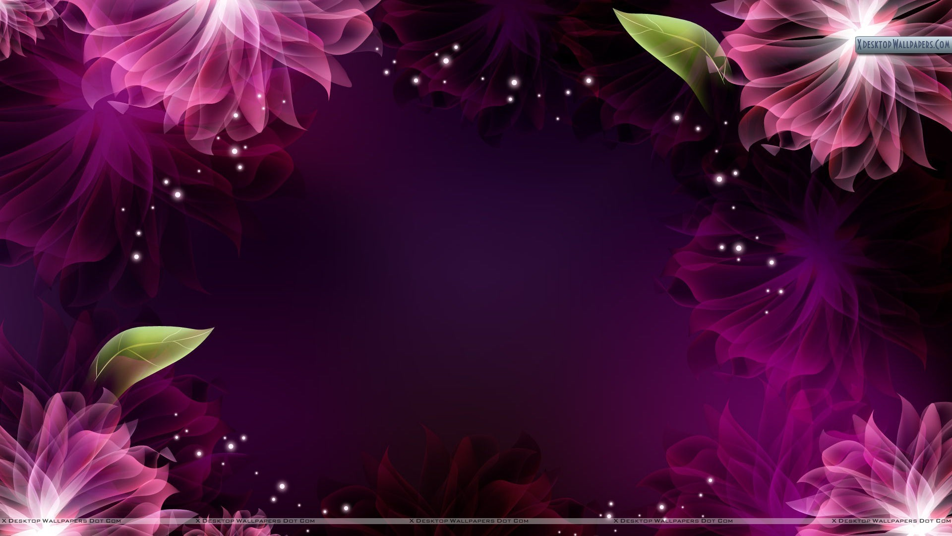 1920x1080 Background Wallpaper Flowers - WallpaperSafari clip freeuse stock