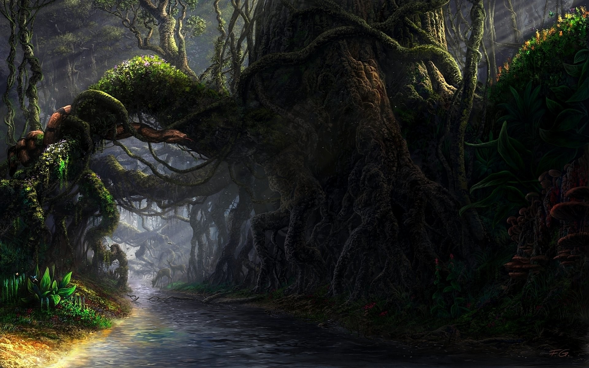 Fantasy Forest Wallpaper Hd 78 Images