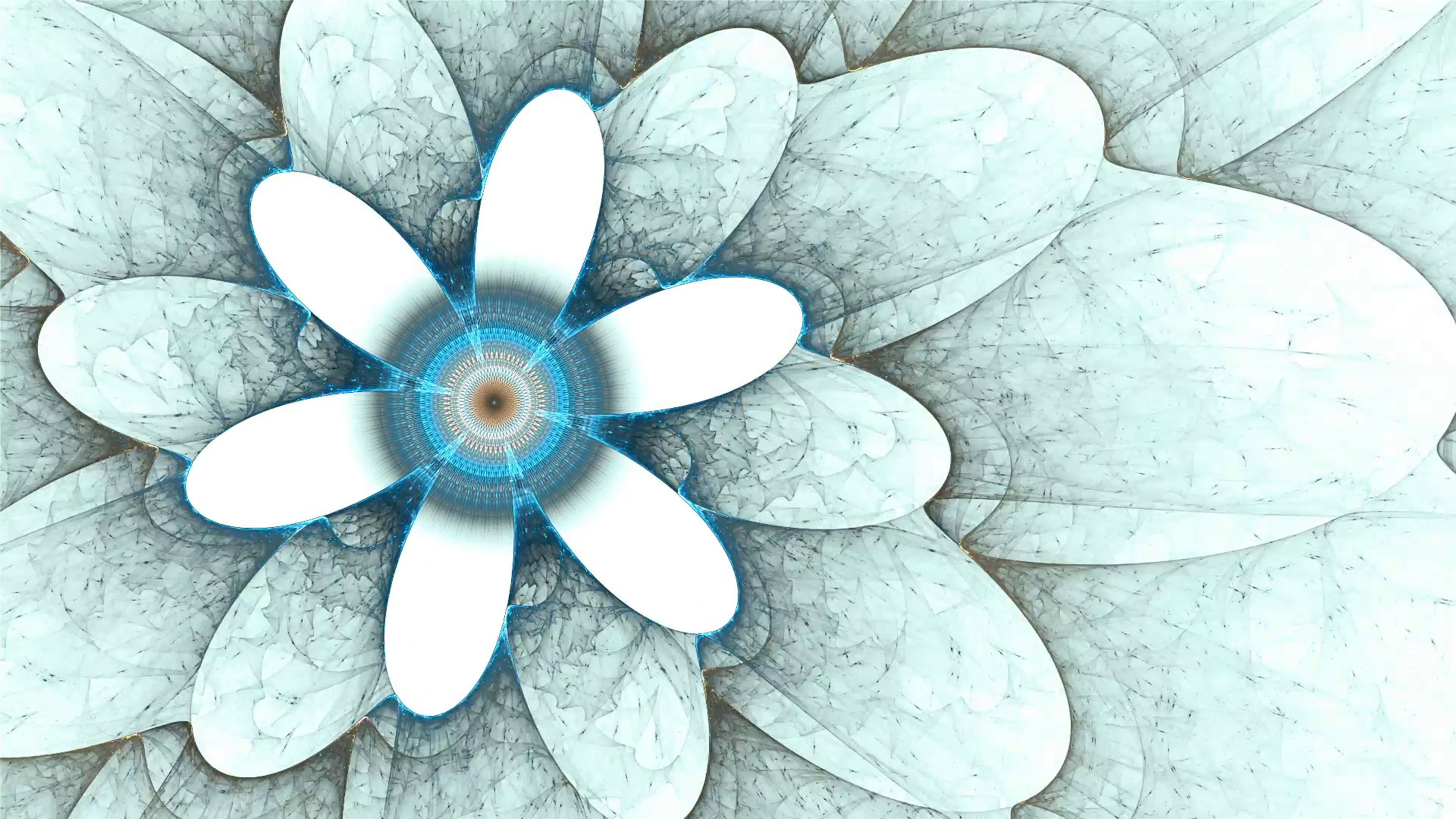 1920x1080 blue flower, spring, floral background, flowers on white, spring, abstract  illustration animated, 30fps, HD1080, seamless loop Motion Background - ...
