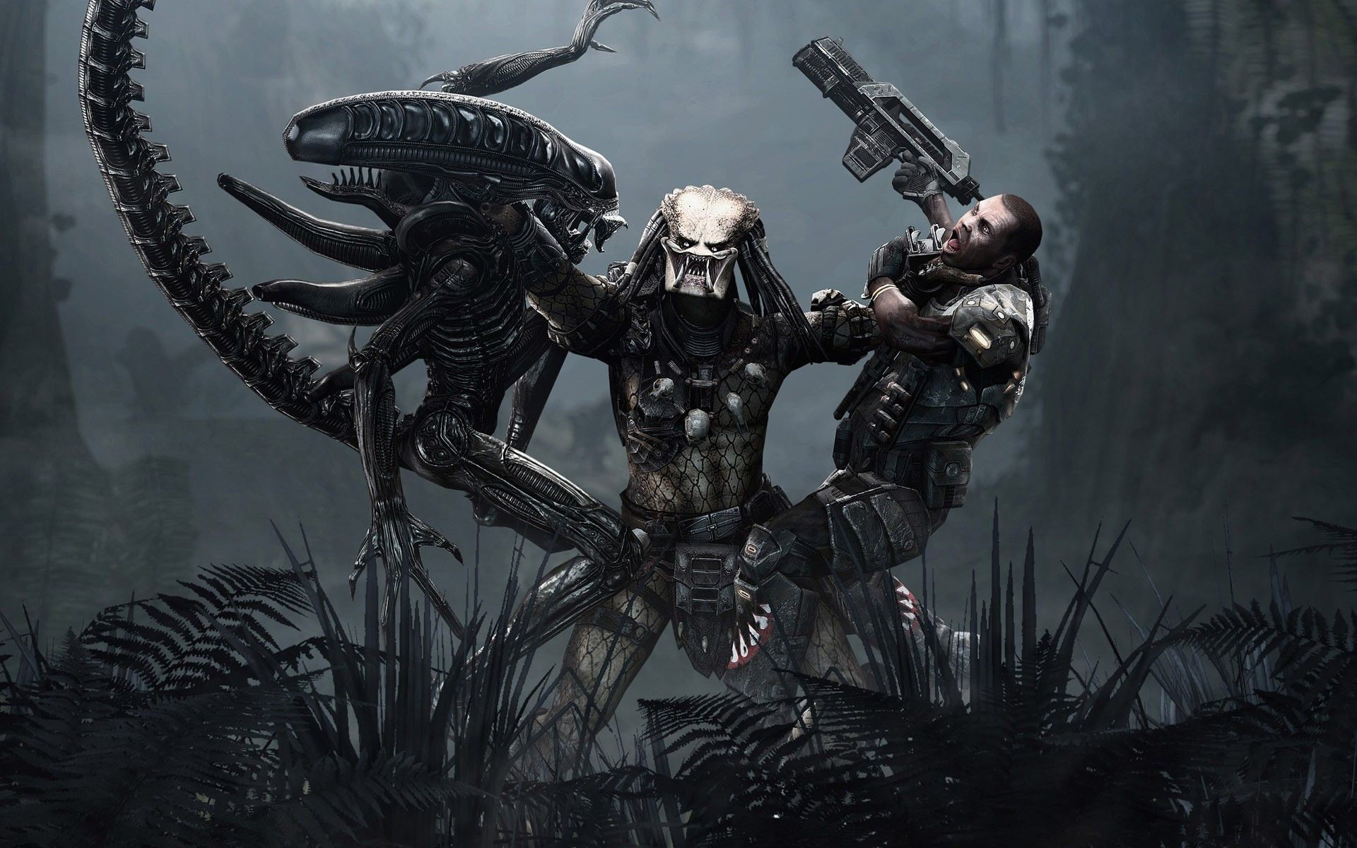 Alien Vs Predator Wallpaper 80 Images