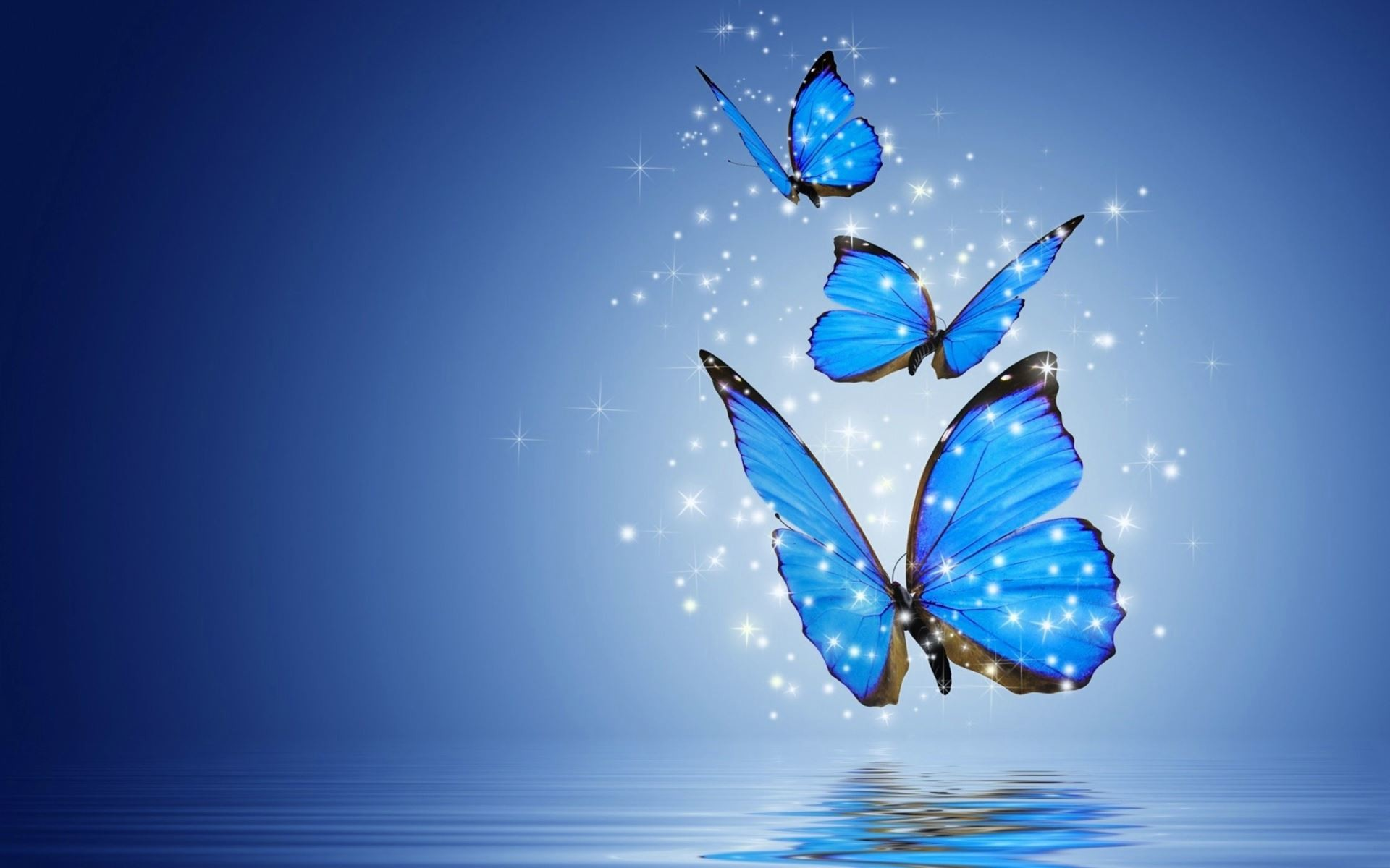 1920x1200 hd wallpapers for desktop butterflies - Bing images
