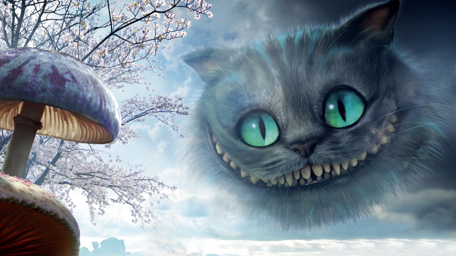 Hd Cat Wallpapers 1920x1080 69 Images: Cheshire Cat Wallpapers (65+ Images