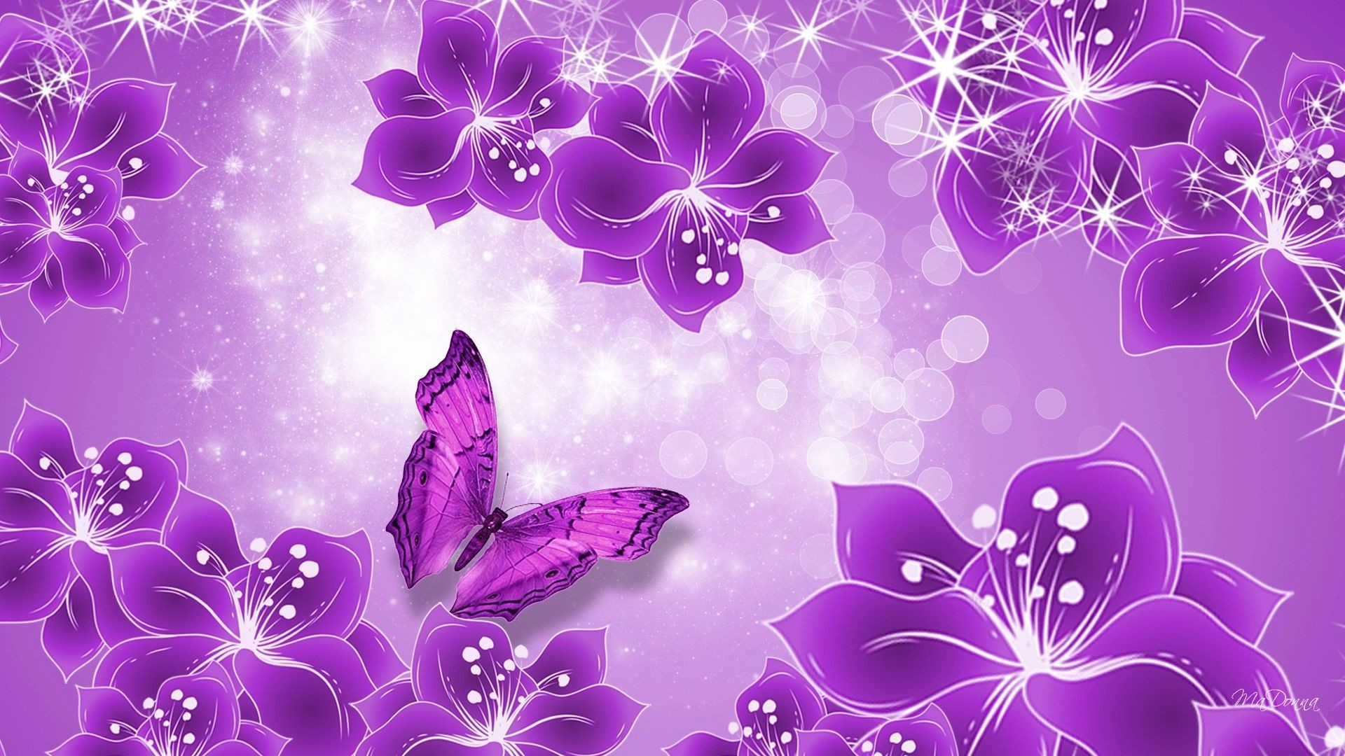 1920x1080 Purple Butterfly Wallpaper Phone with High Resolution Wallpaper   px 341.10 KB