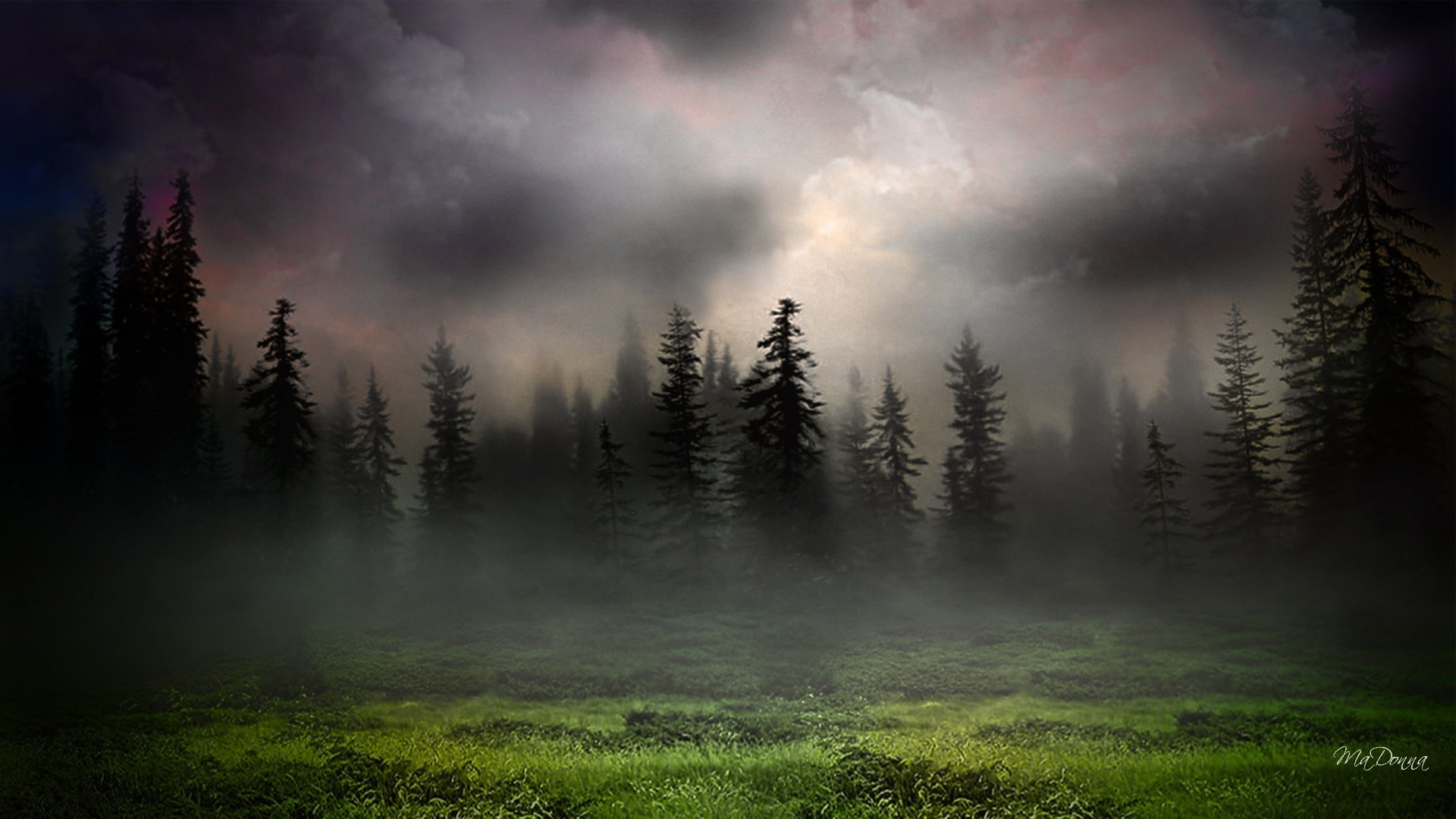 1920x1080 Sunrise in foggy woods wallpaper