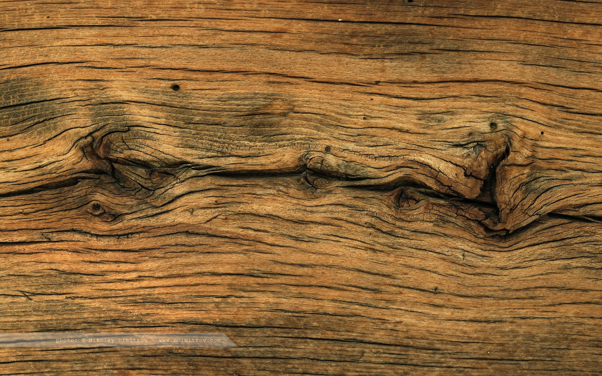 1920x1200 wood wallpaper 1 wood wallpaper 1 Old wood ...