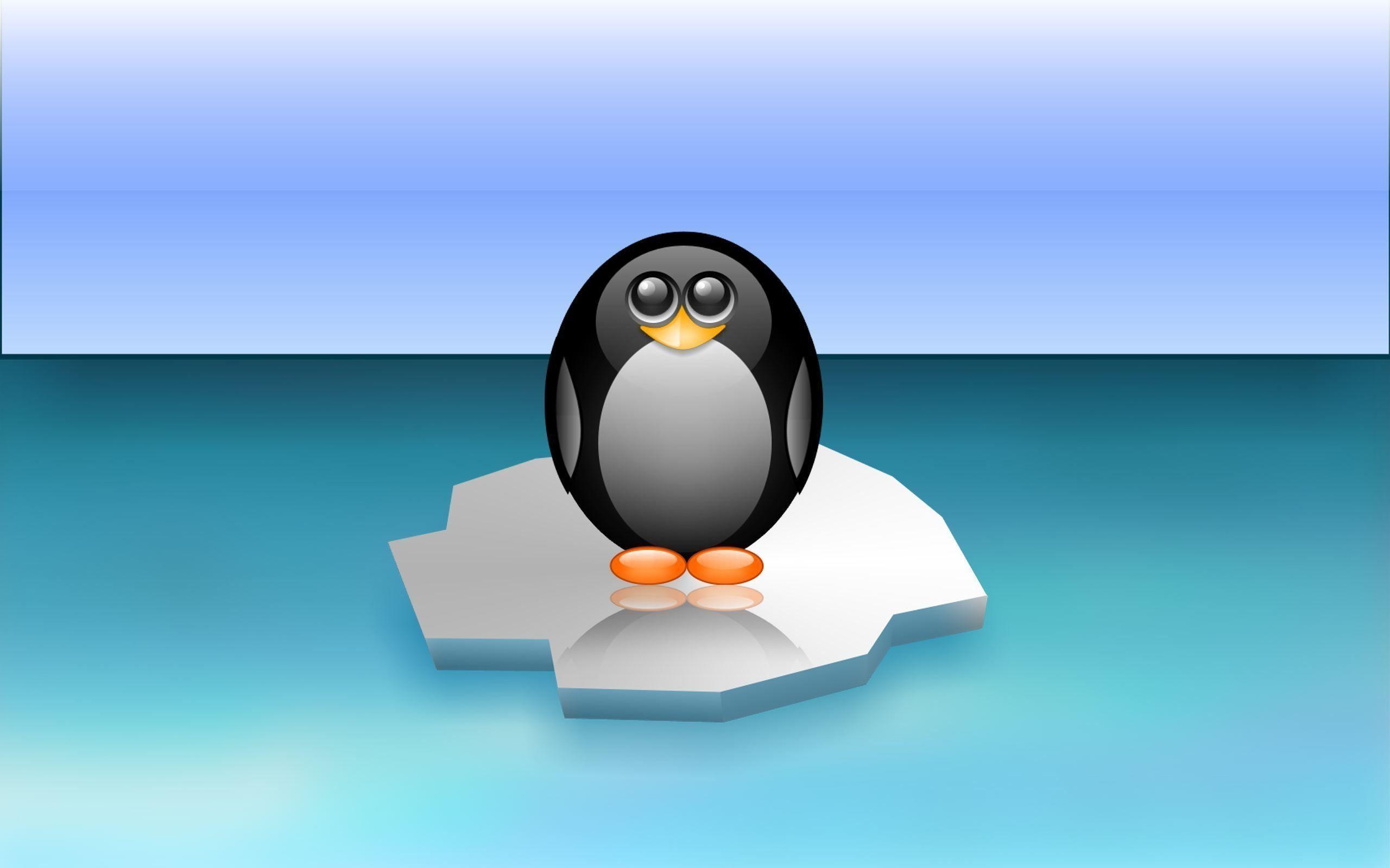 2048x1536 Tablet Android 1024x600 1280x1280 Wallpaper Description Title Cute Penguin Wallpapers Picture