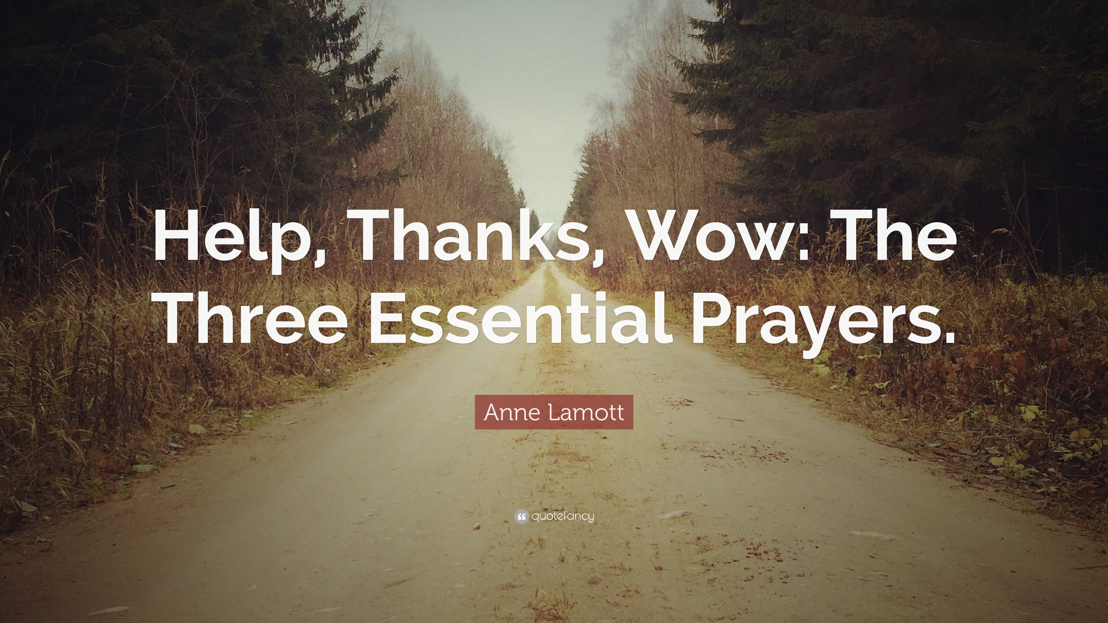 "3840x2160 Anne Lamott Quote: ""Help, Thanks, Wow: The Three Essential Prayers."