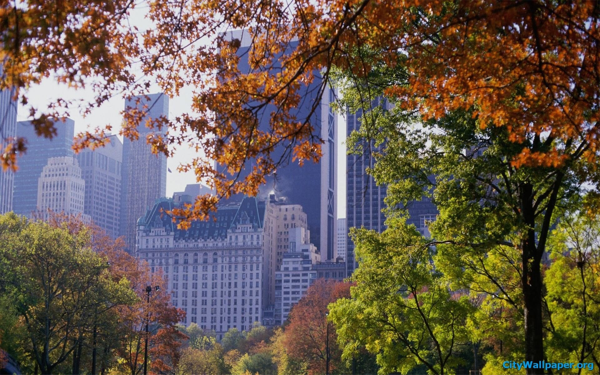 1920x1200 Autumn New York Central Park 477311