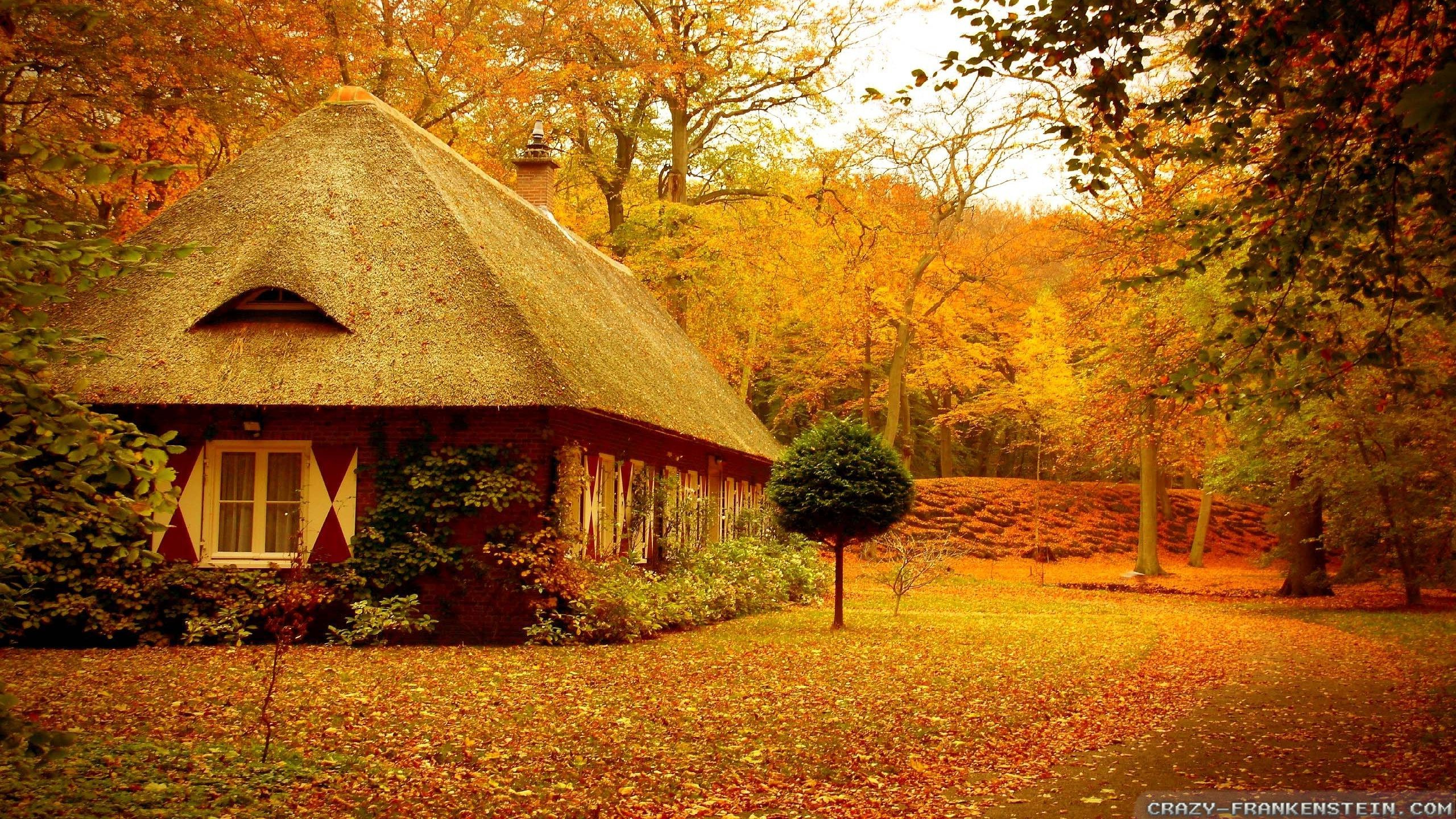 Free Autumn Desktop Screensavers: Autumn Screensavers Wallpaper (57+ Images