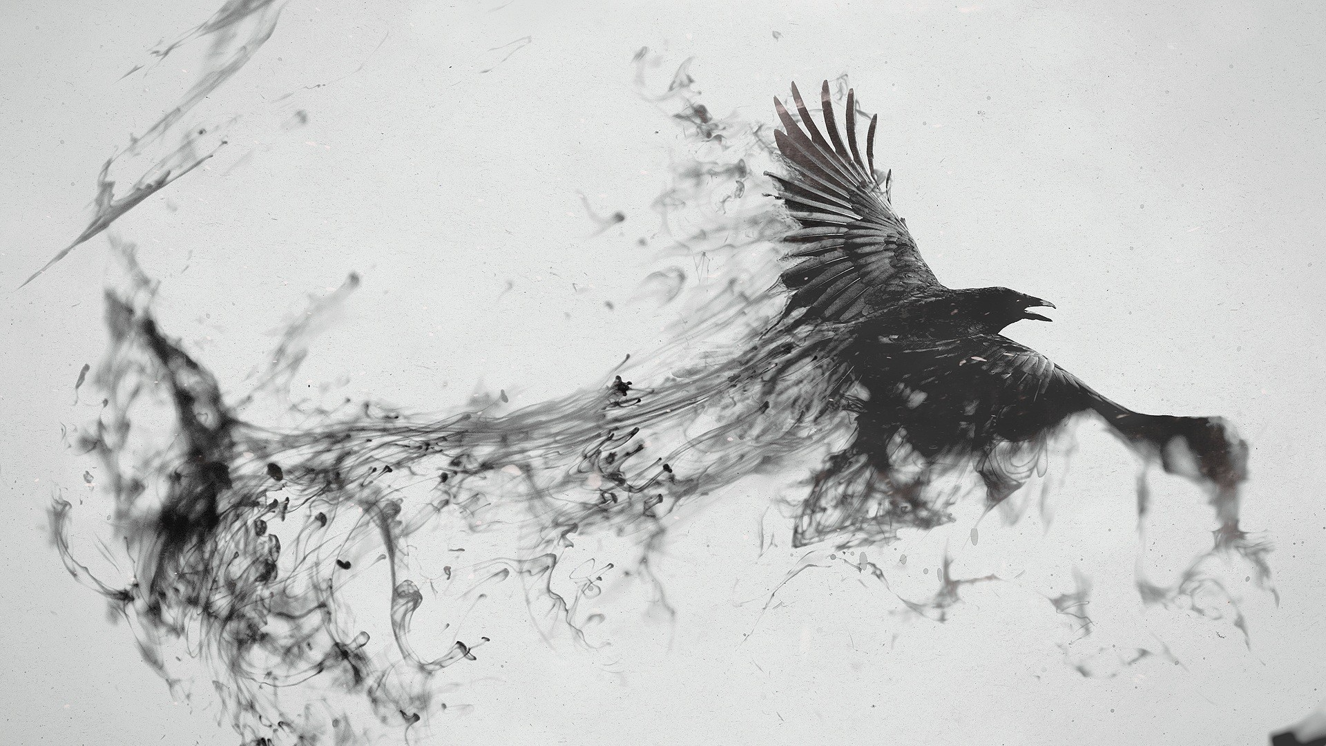 1920x1080 Preview wallpaper raven, bird, flying, smoke, black white