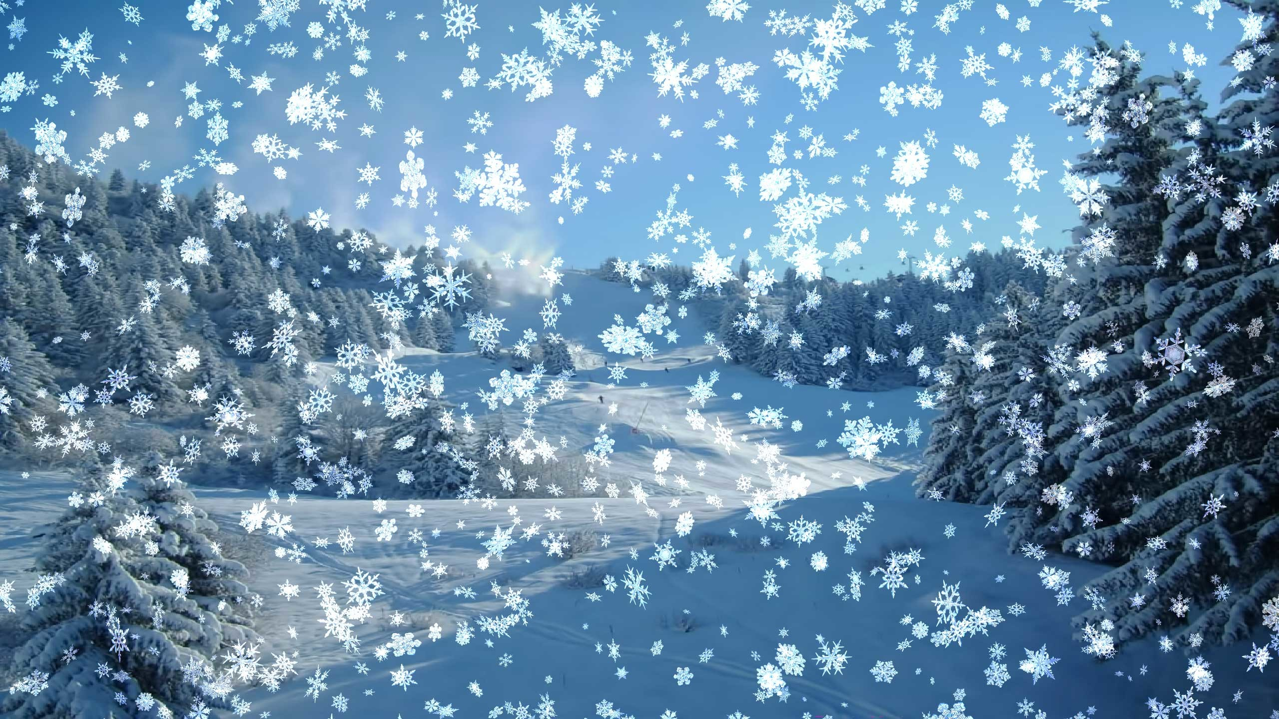 Snow Scenes Wallpaper 56 Images