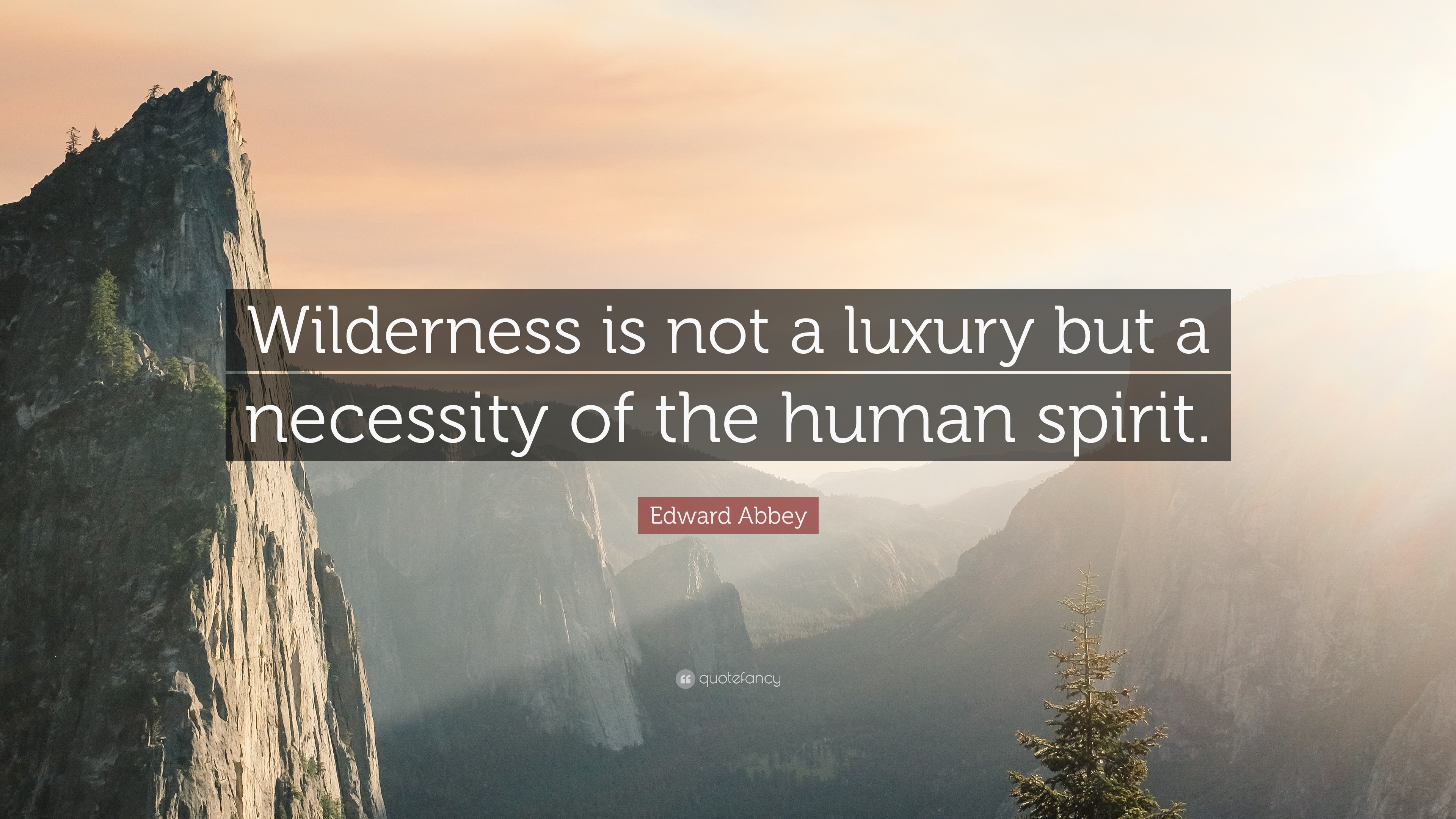 "3840x2160 Nature Quotes: ""Wilderness is not a luxury but a necessity of the human  spirit"