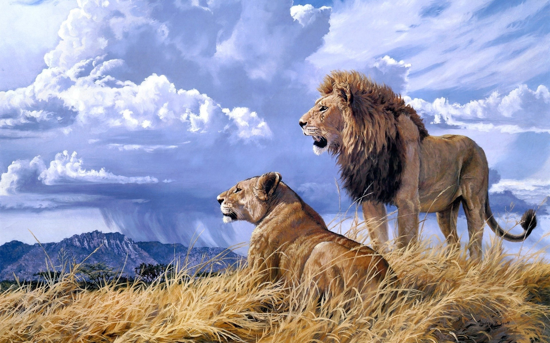 1920x1200 animals cats lion painting art landscape nature wildlife africa grass .
