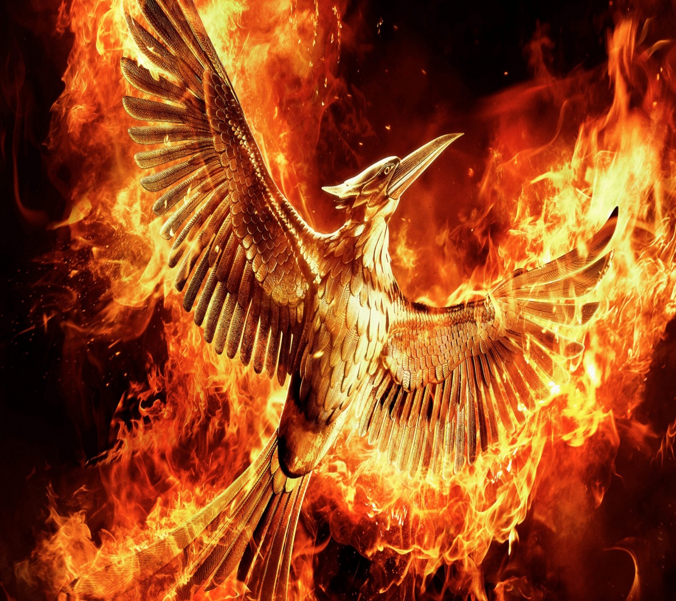 2160x1920 Tap to see 12 HD wallpapers of The Hunger Games: Mockingjay Francis  Lawrence fire bird - Android wallpapers, scrollable backgrounds