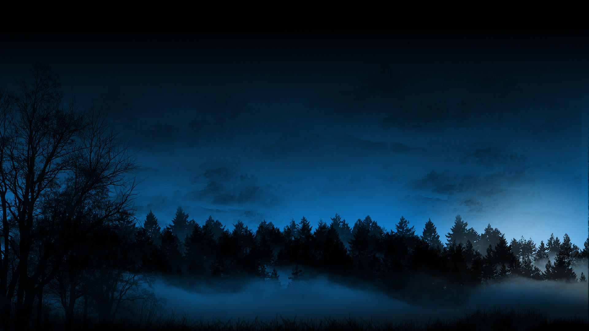 1920x1080 Dark Forest Wallpaper Desktop Background Is Cool Wallpapers
