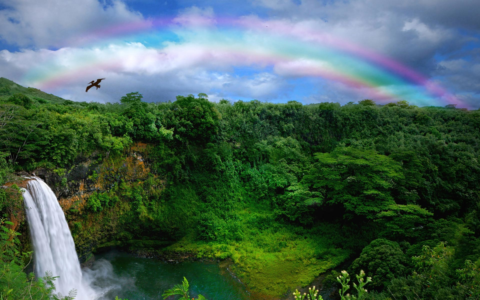 1920x1200 ... Rainbow HD Wallpapers 3 ...