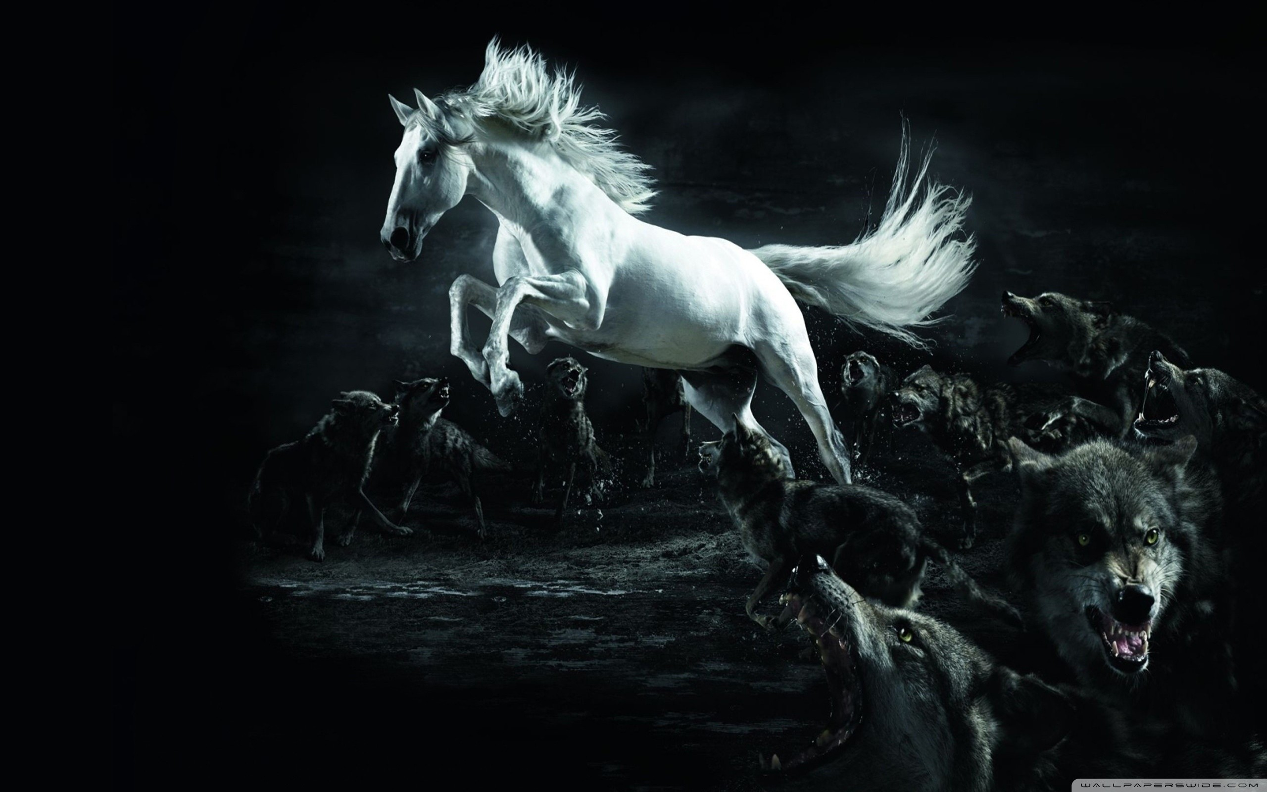 2560x1600 Horse and Wolves HD Wide Wallpaper for Widescreen