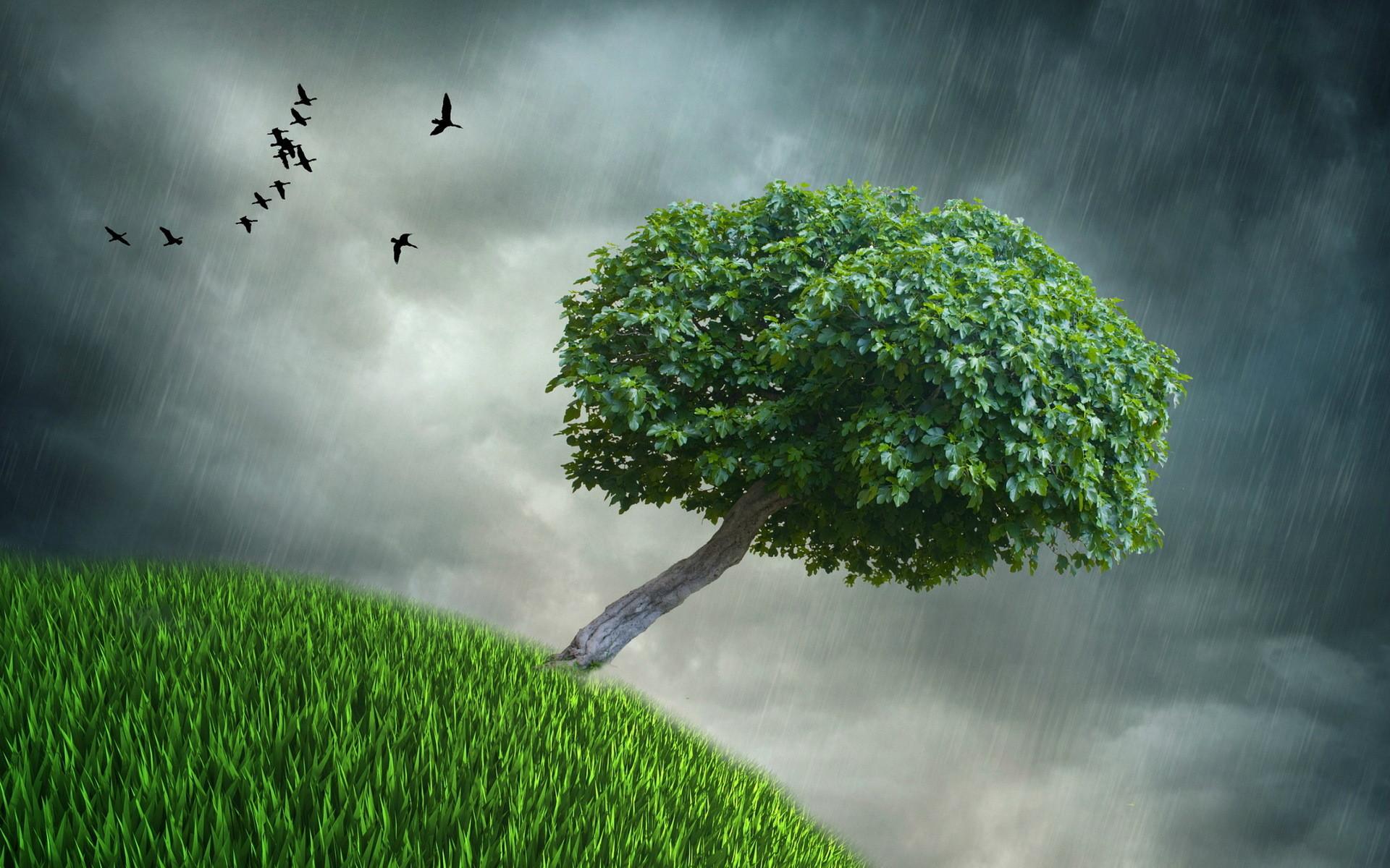 Rain storm desktop wallpaper 49 images for Rain wallpaper hd