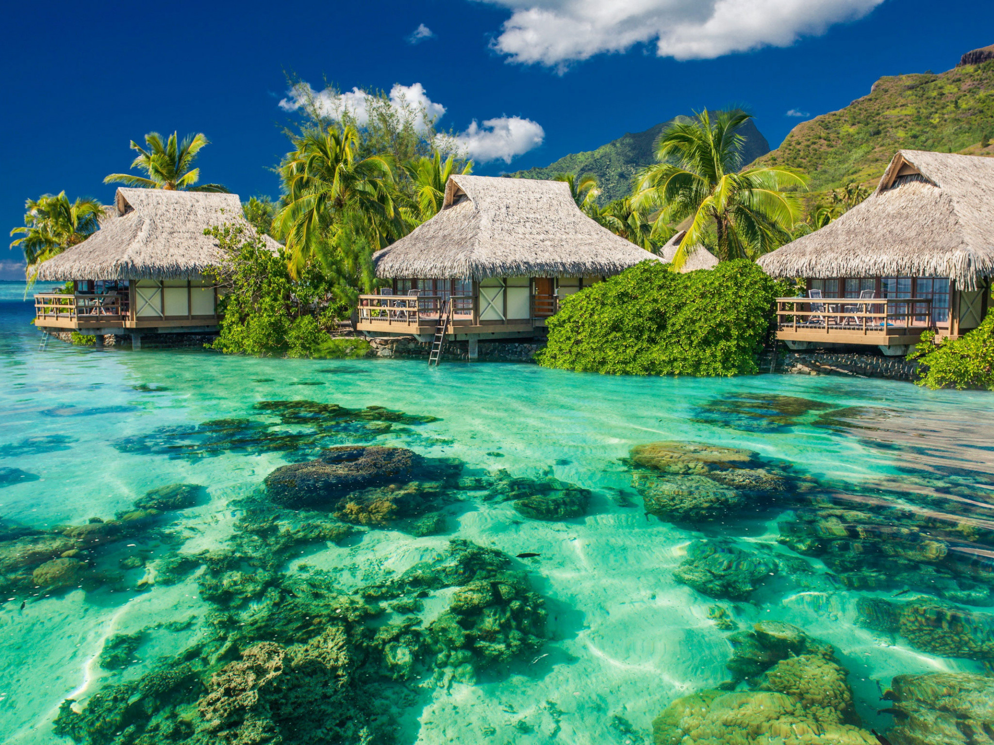 2048x1536 Coral Reef, Tahiti, Resort Town, Resort, Caribbean Wallpaper in   Resolution
