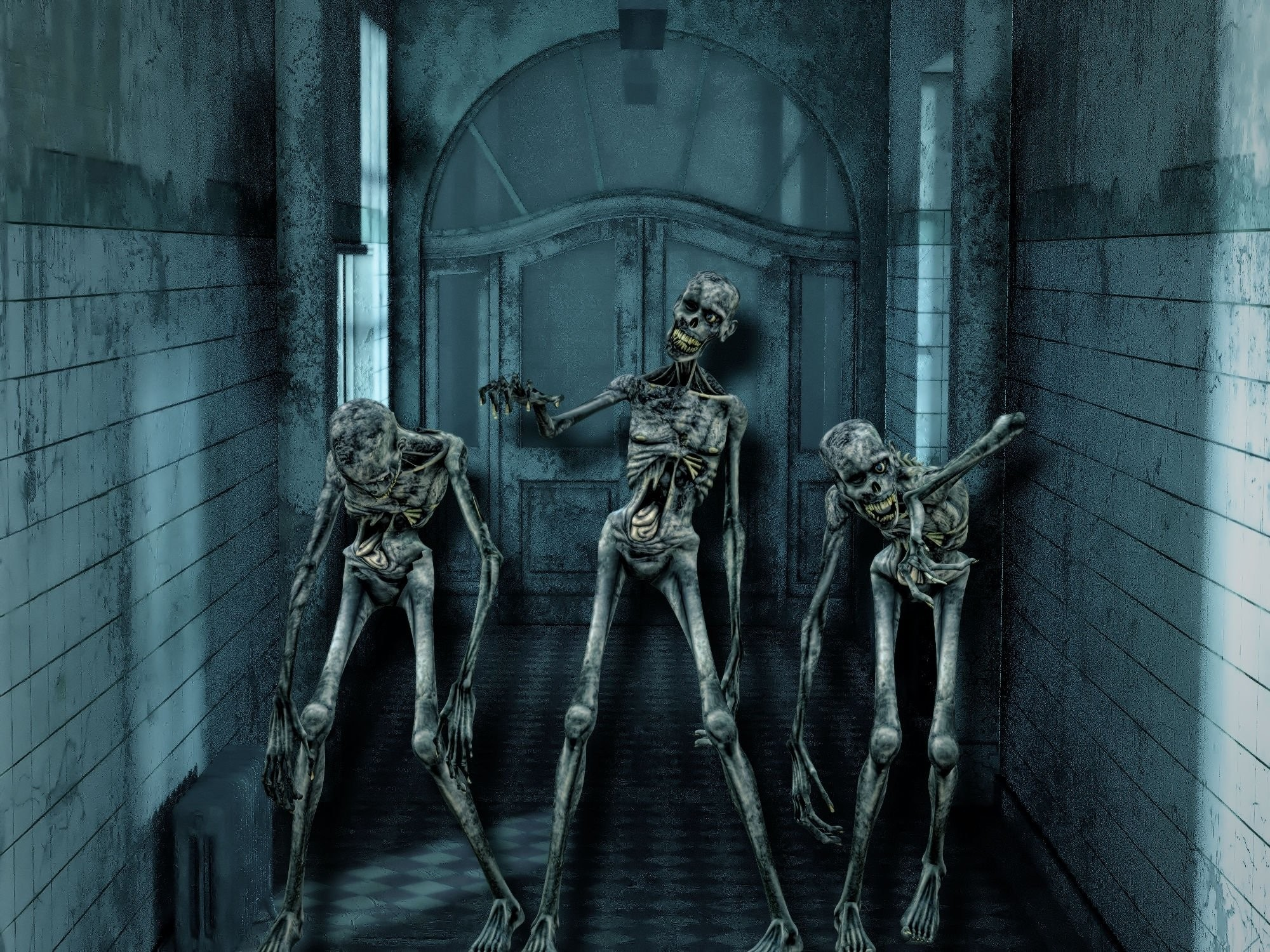 Popular Wallpaper Halloween Skeleton - 103334  Image_213287.jpg