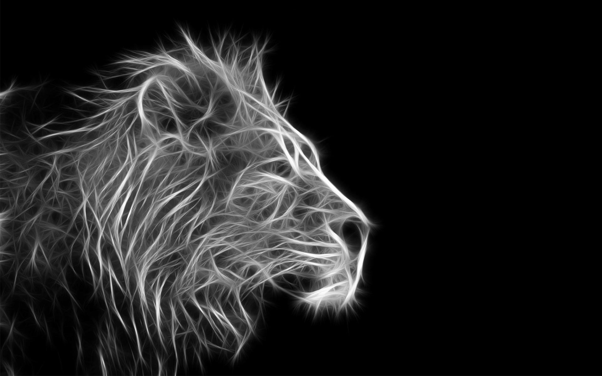 1920x1200 ...  black lion hd wallpapers Collection (49