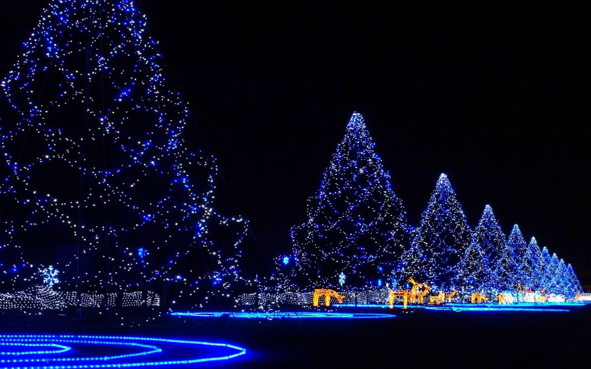1920x1200 Christmas trees covered in lights merry christmas holiday holidays hd  wallpaper.