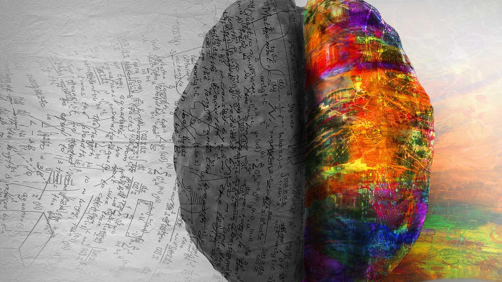 Left Brain Right Brain Wallpaper 67 Images