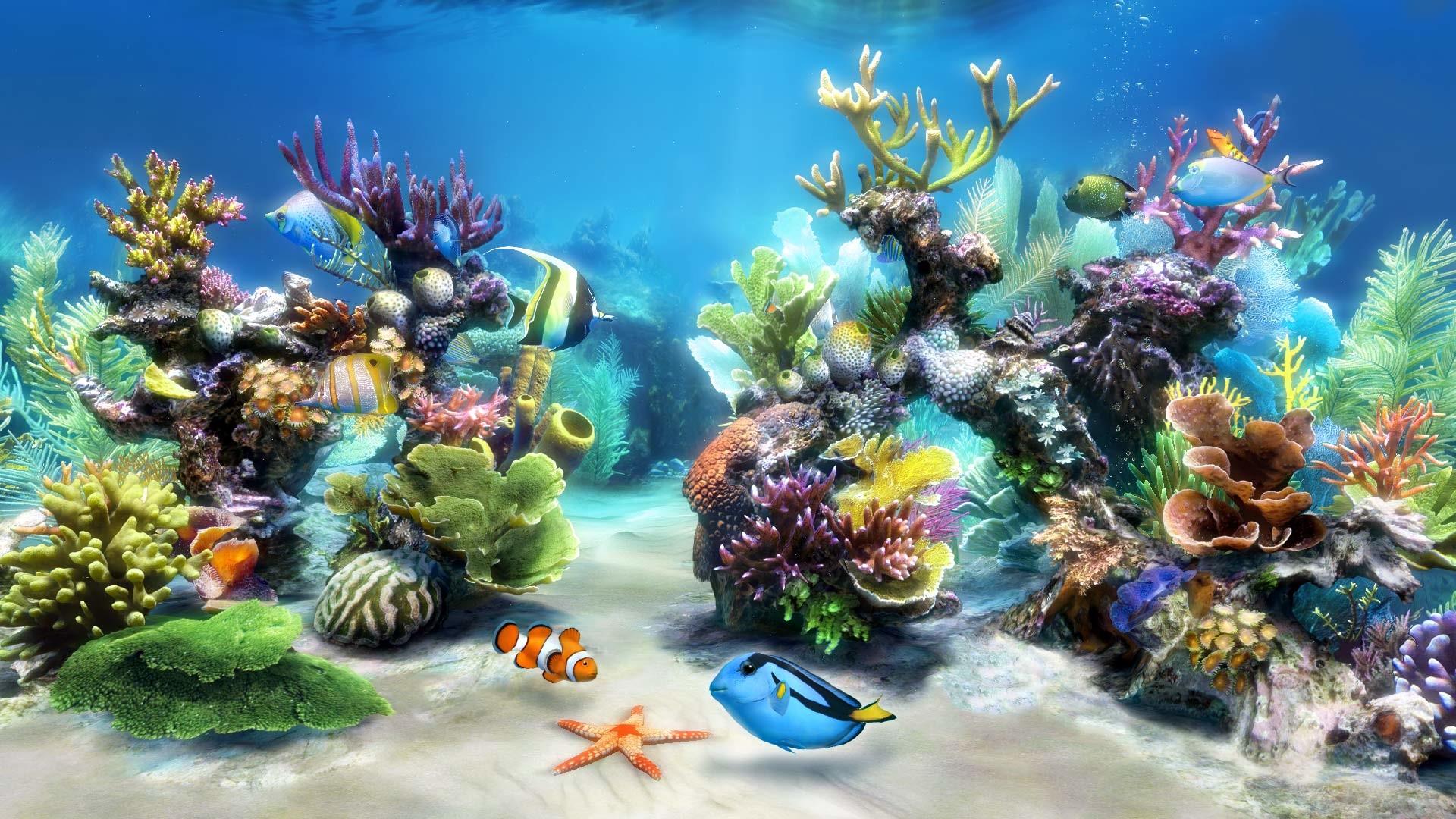 Live Aquarium Wallpaper Hd Wallpaper Desktop Hd