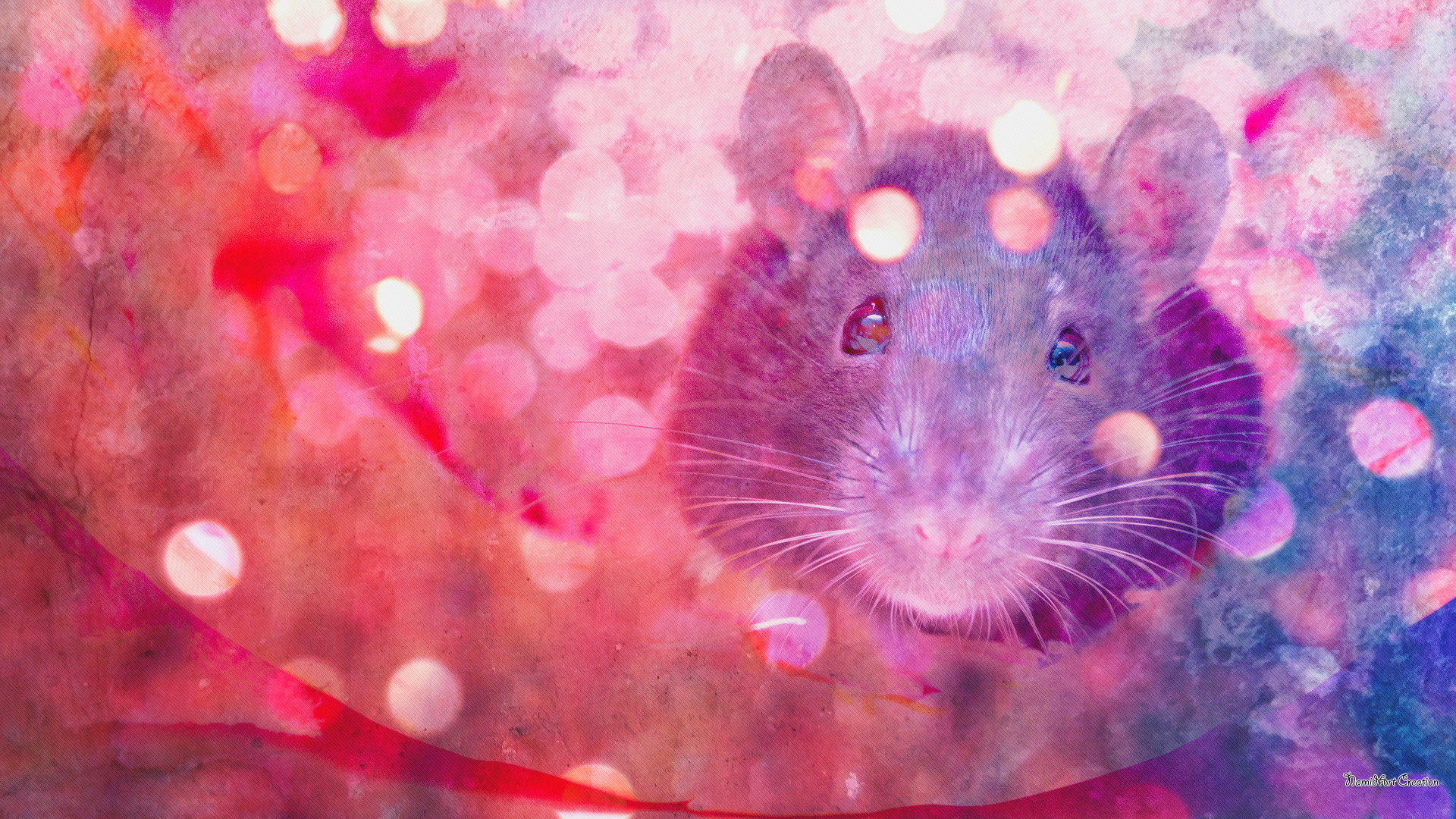 rat wallpaper 53 images
