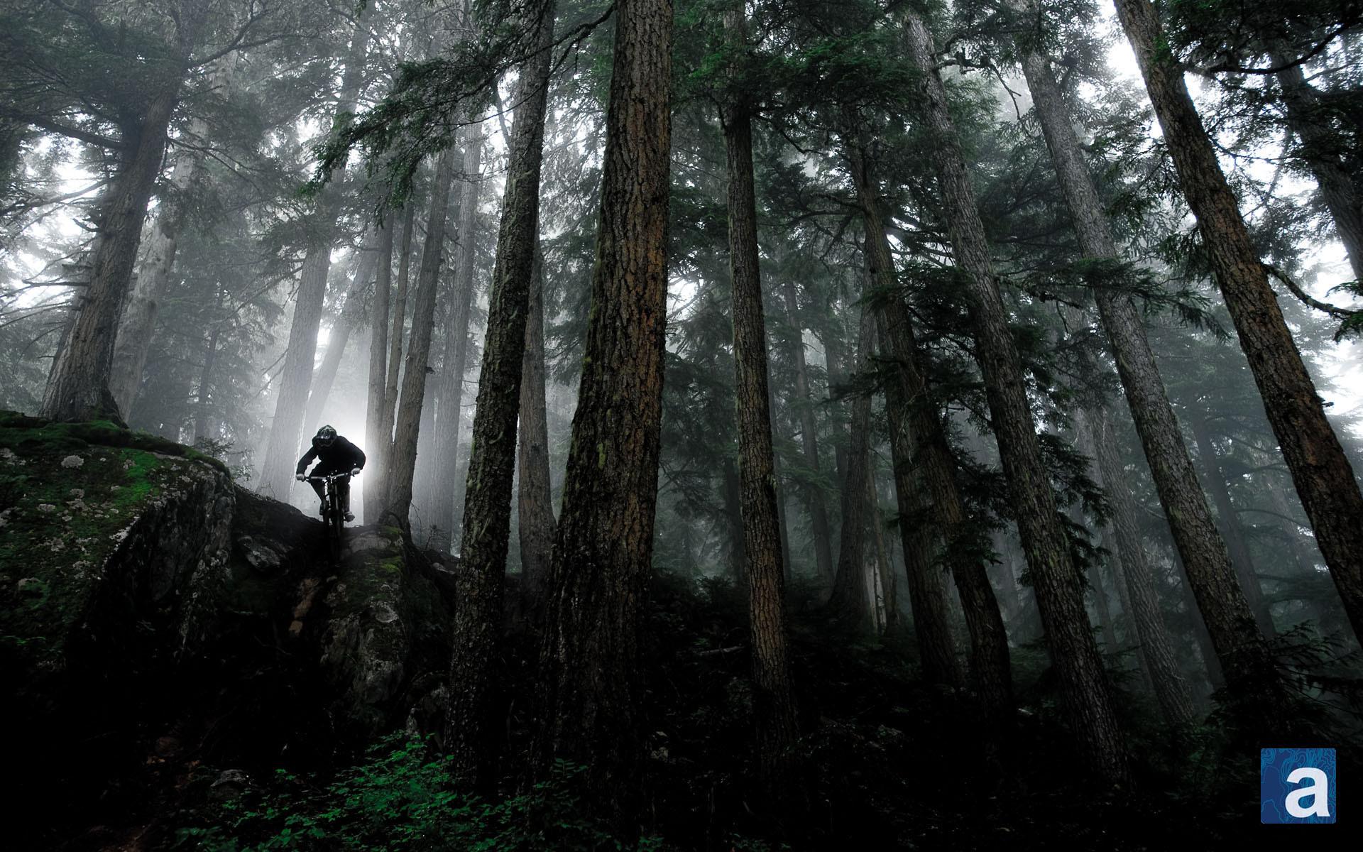 Downhill Mountain Bike Wallpaper (67+ images)