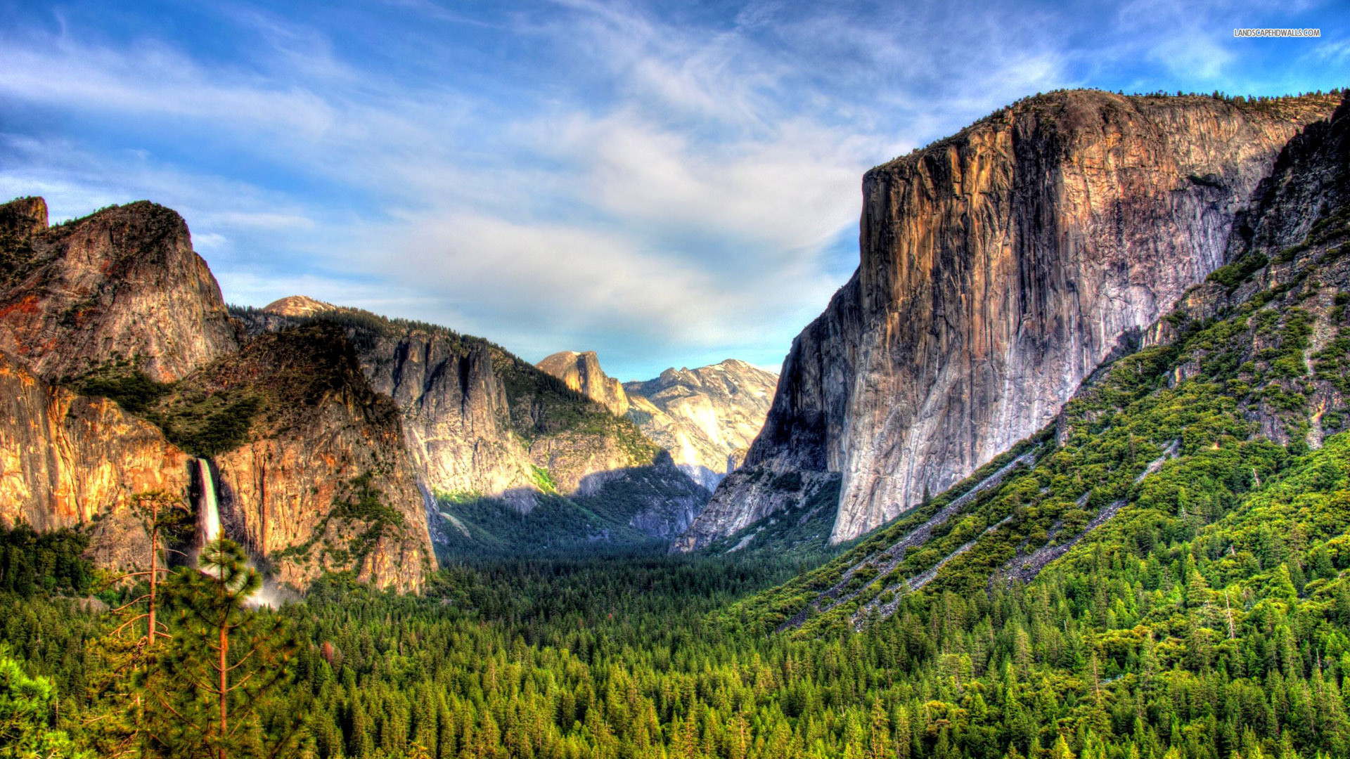 1920x1080 Yosemite Wallpaper, OS: Yosemite, k wallpapers, forest, OSX Yosemite  Wallpaper Wallpapers)