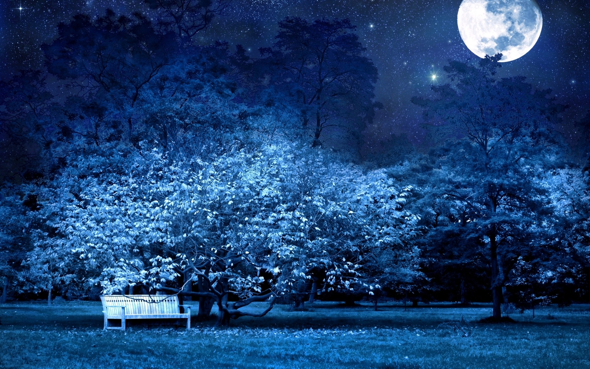 1920x1200 Bild: Deep Blue Nacht wallpapers and stock photos. Â«